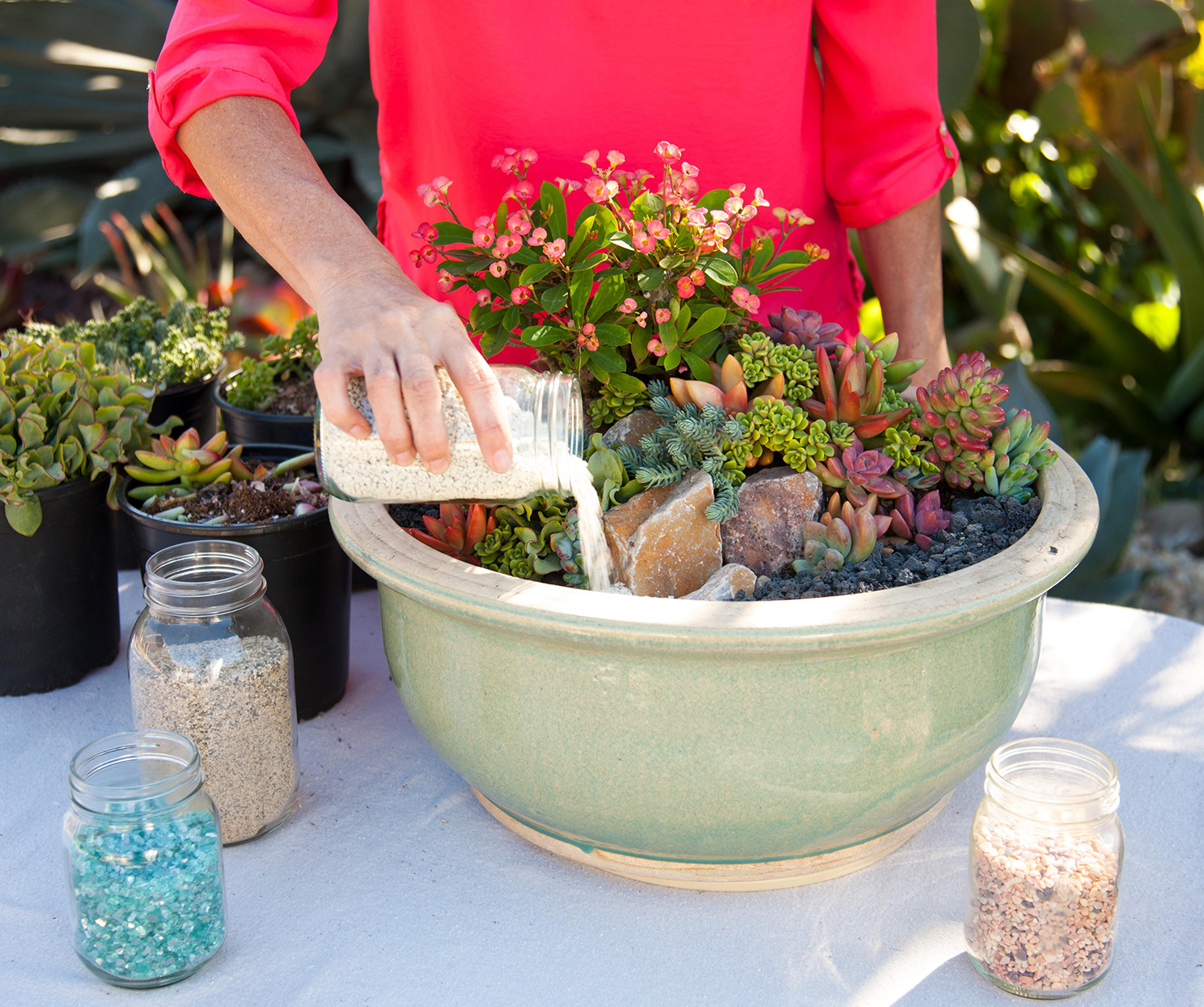 woman pouring gravel in container with succulent plants on table