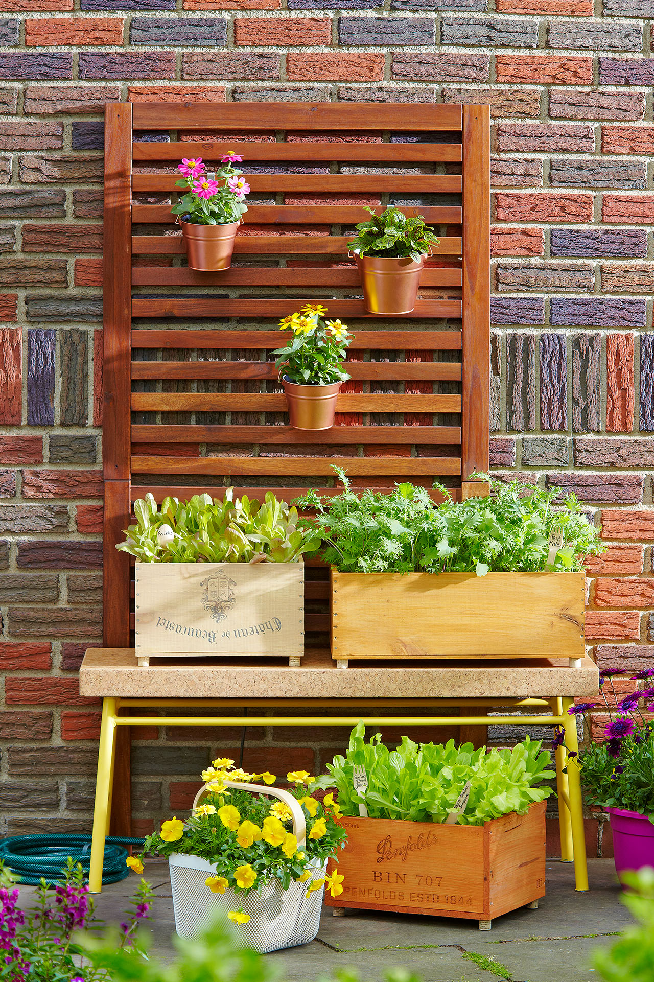 various plants in planters against wall in garden
