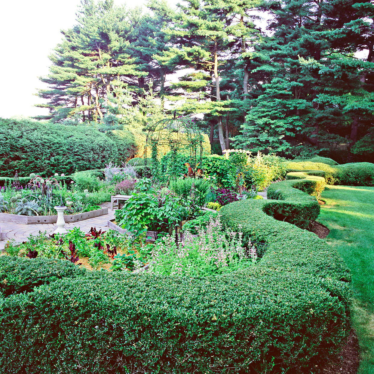 formal garden with curving hedge