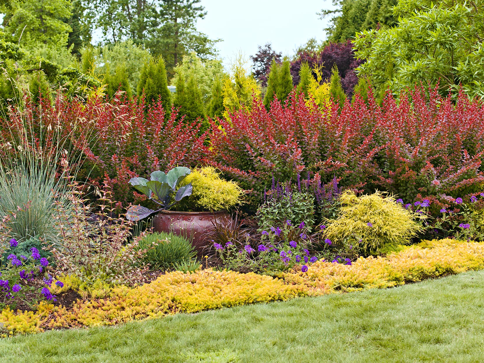 multiple-layered garden with pot
