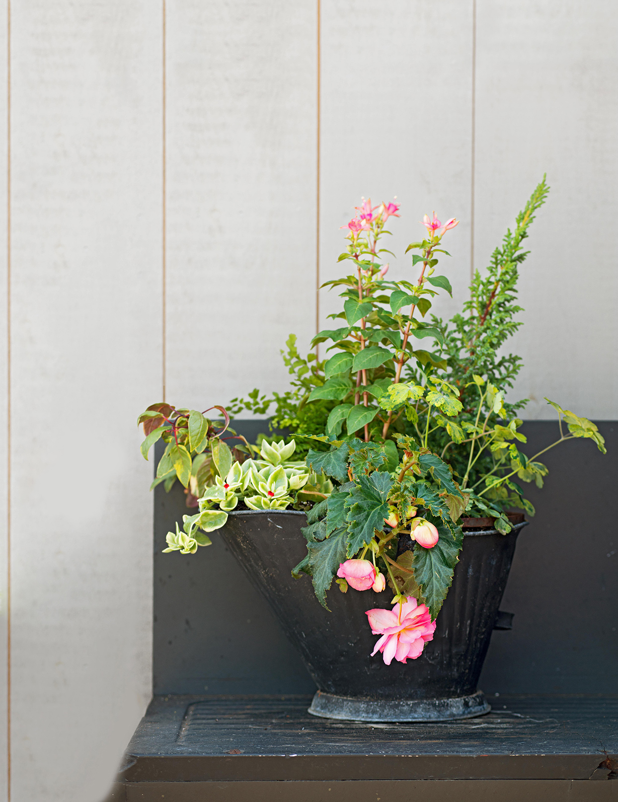 black container with pink flowers and succulents