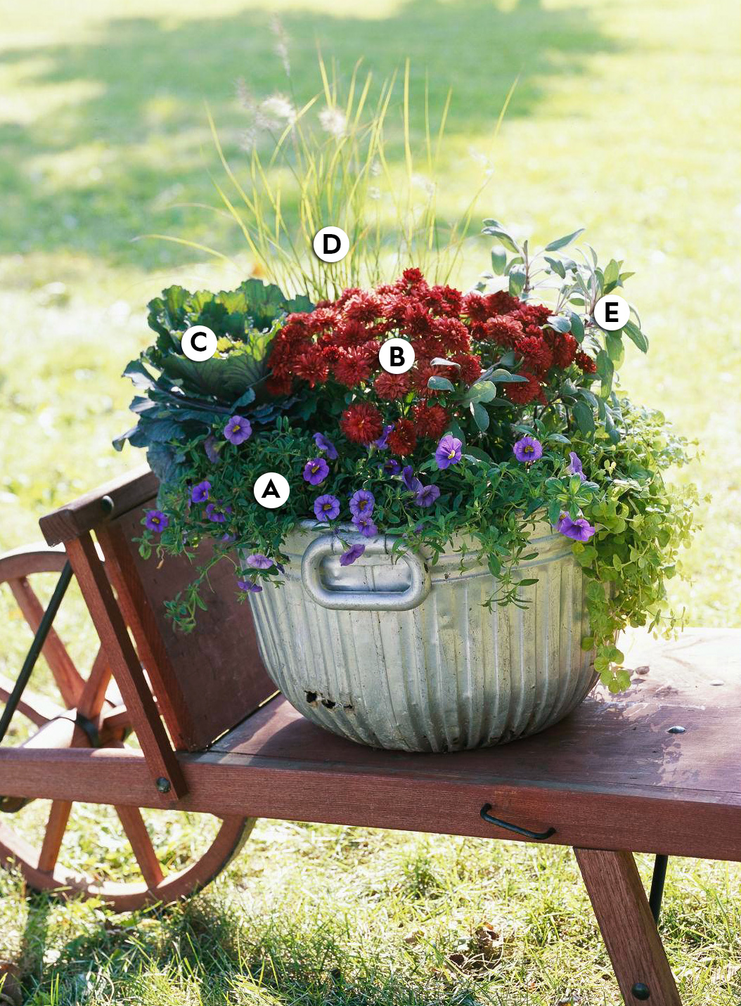 Instant Charm container garden