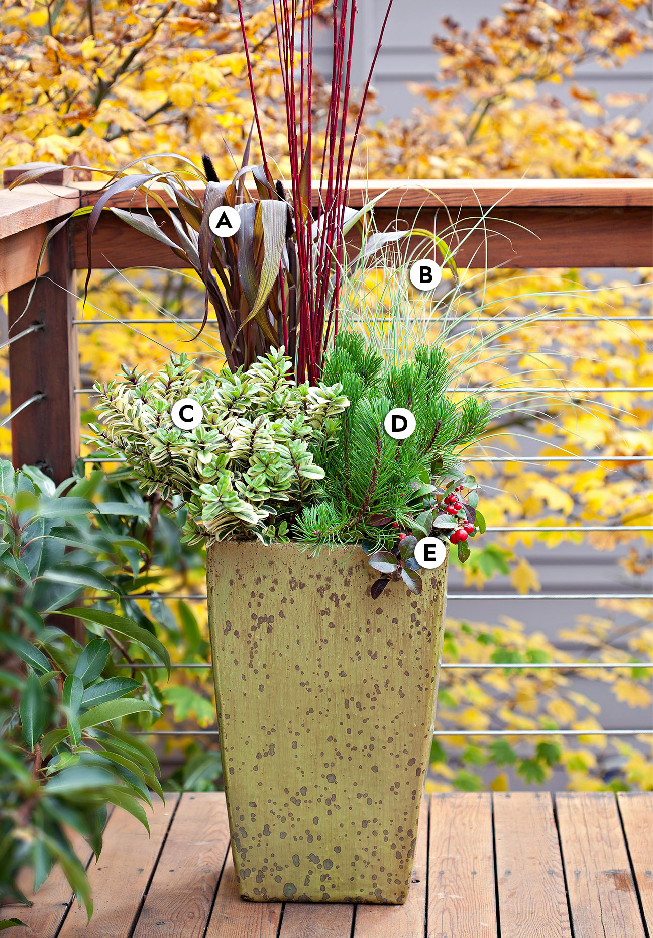 Standing Tall container garden