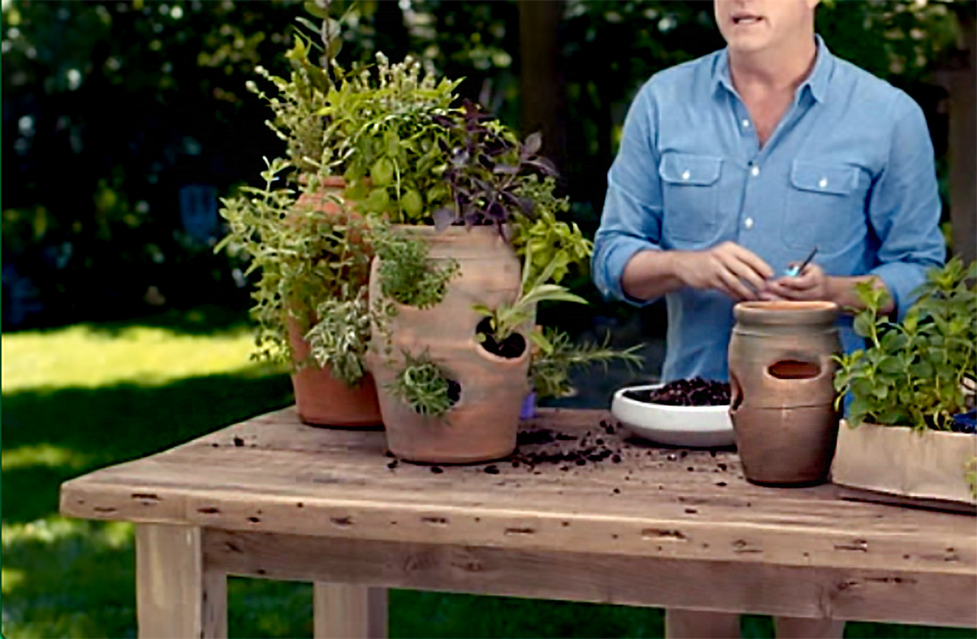 Person demonstrating how to plant herbs in strawberry pot