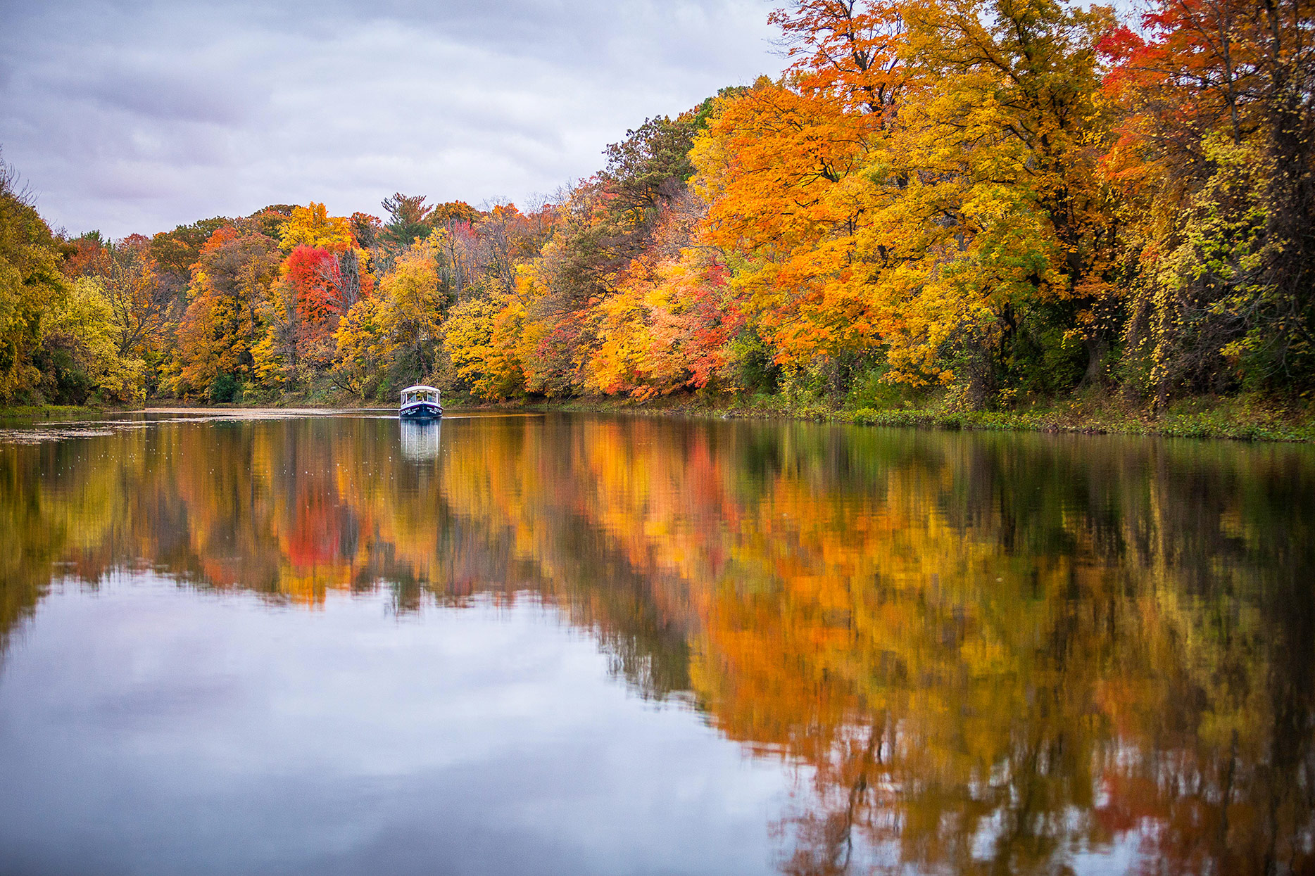 cass river boat tour with fall leaves