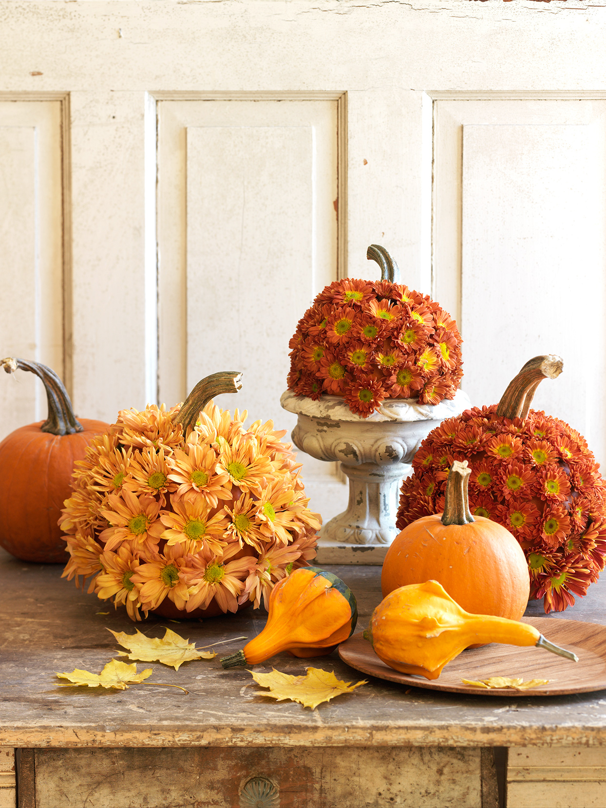 pumpkins with yellow and orange colored mums