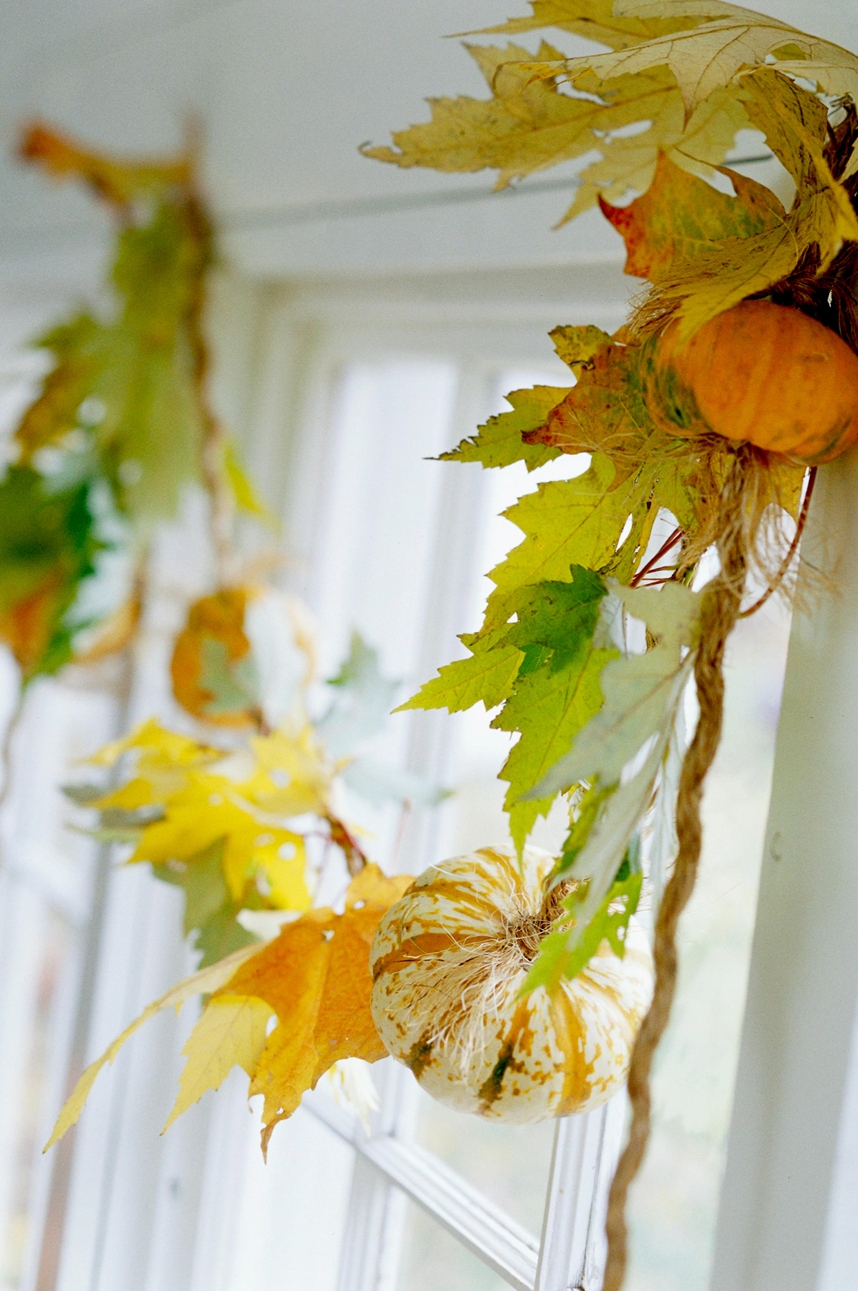 Close up of window fall decorations with leaves and pumpkins