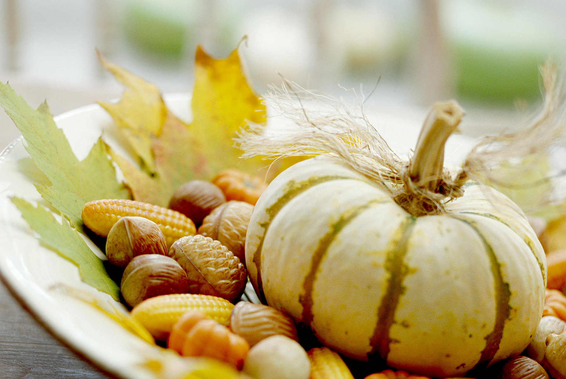 Close up of fall décor with pumpkin, corn, and nuts