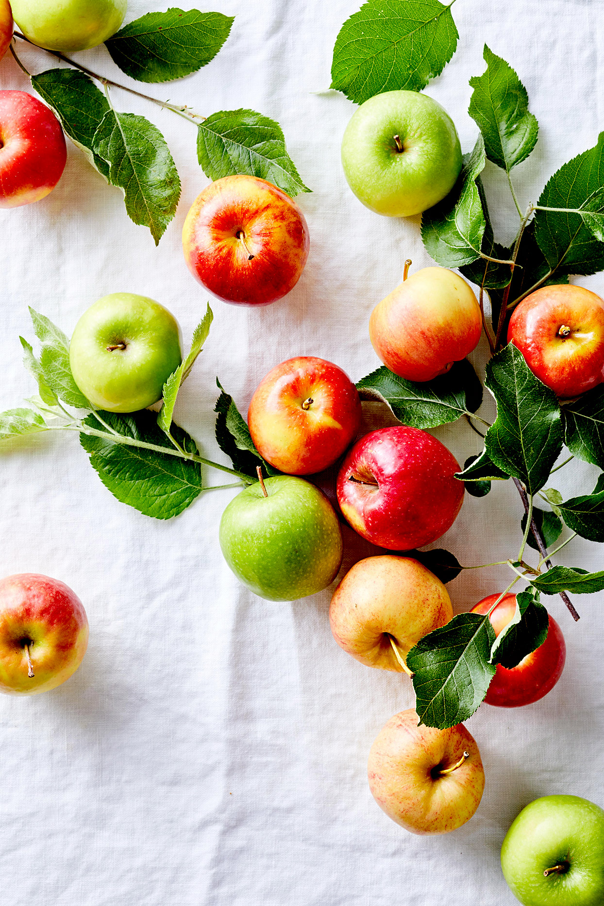 Red and green apples and leaves