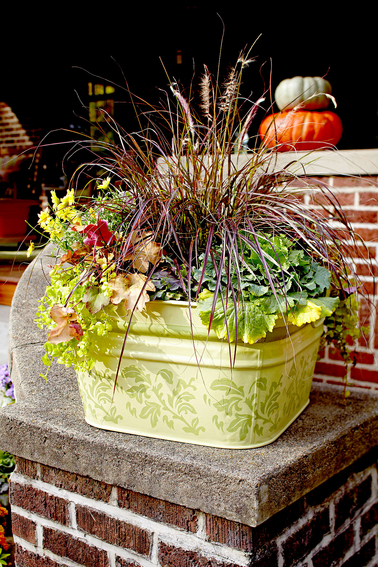 Light green outdoor planter with plant variety