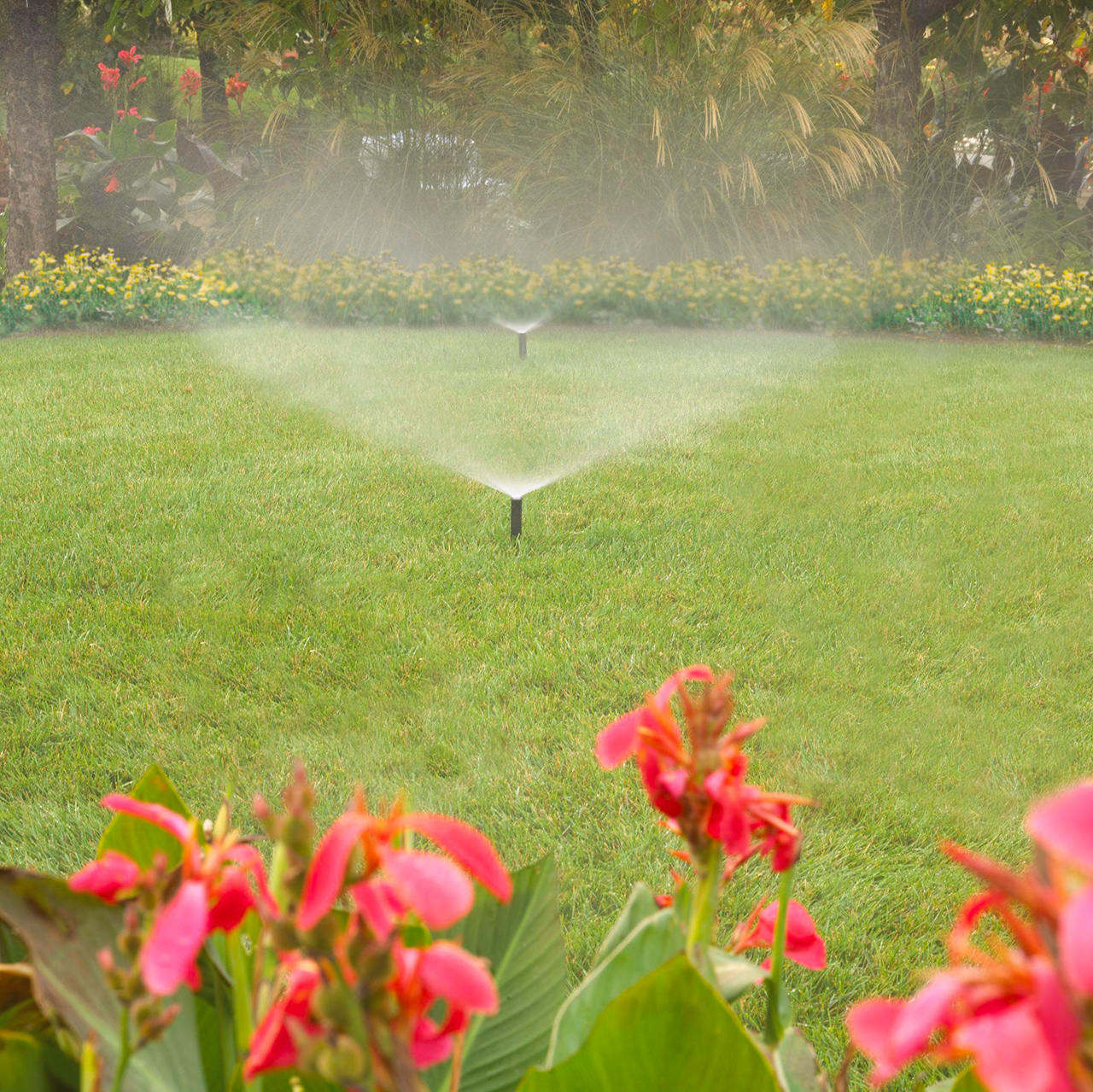 automatic sprinkler lawn system