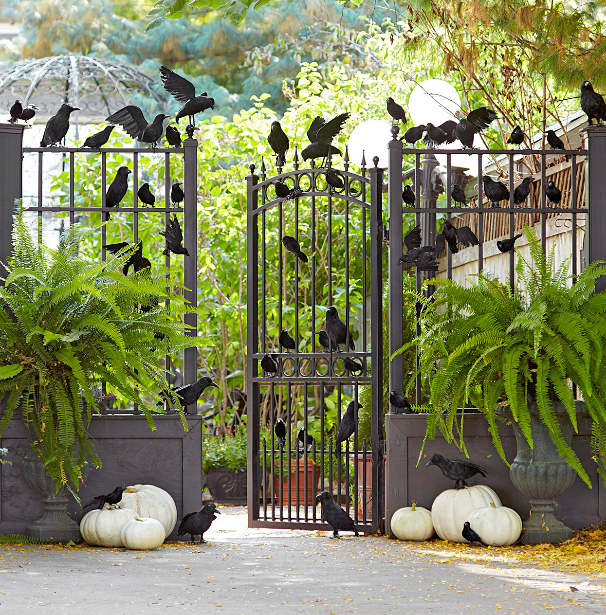 gated entryway with faux ravens