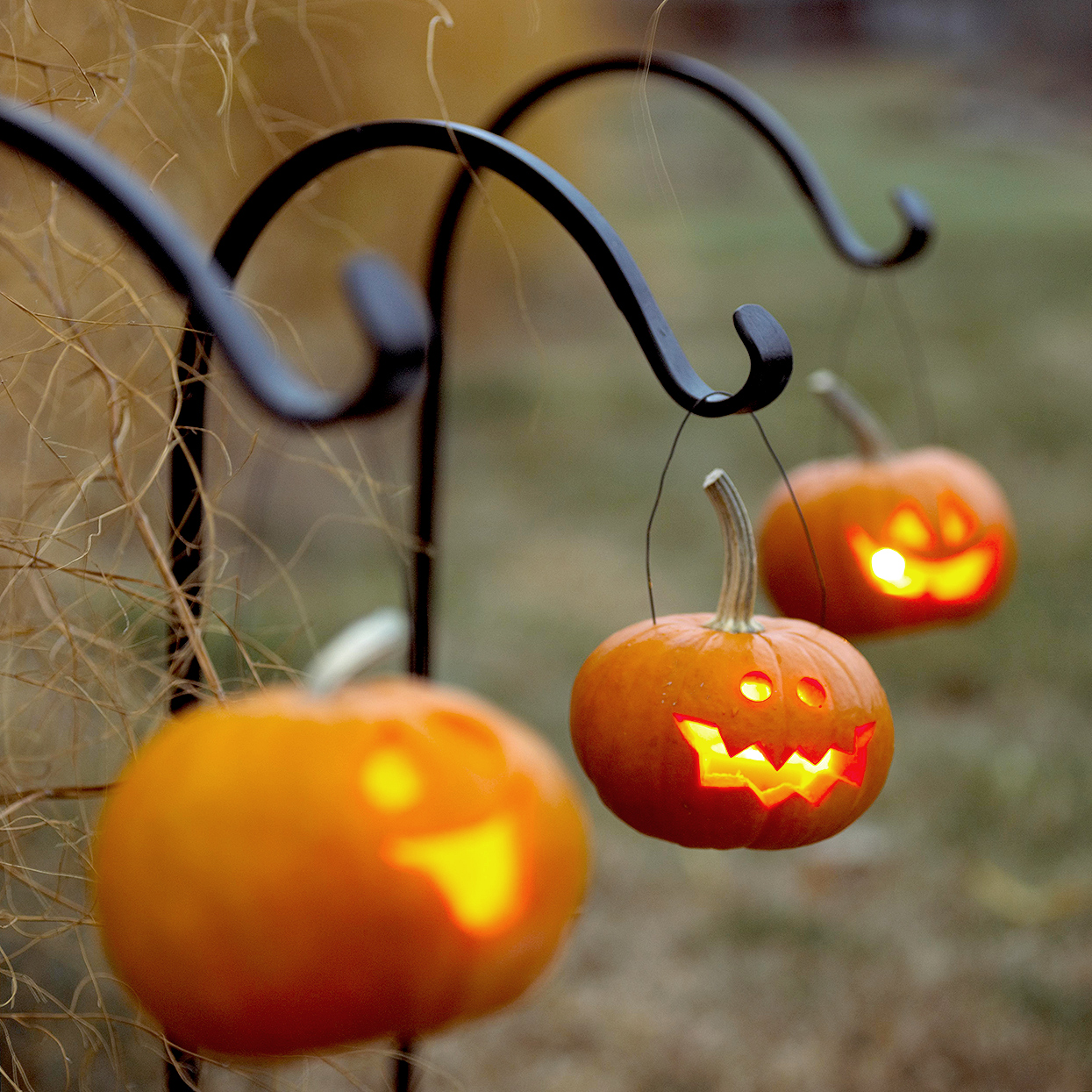 small carved jack-o-lanterns hanging from hooks