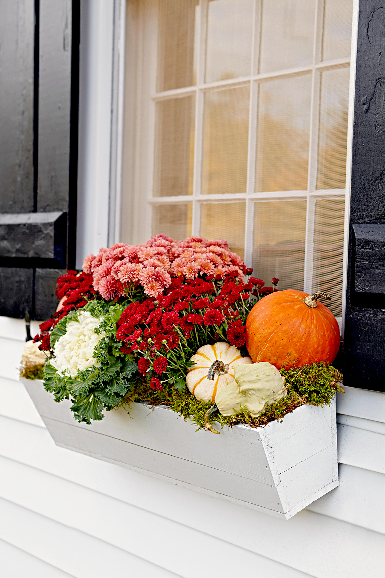 Pumpkins and plants in a window box