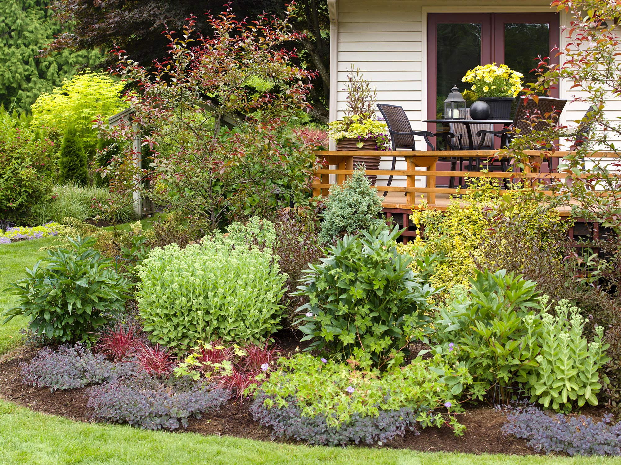 How To Landscape Around A Deck For A Backyard You Ll Be Excited To