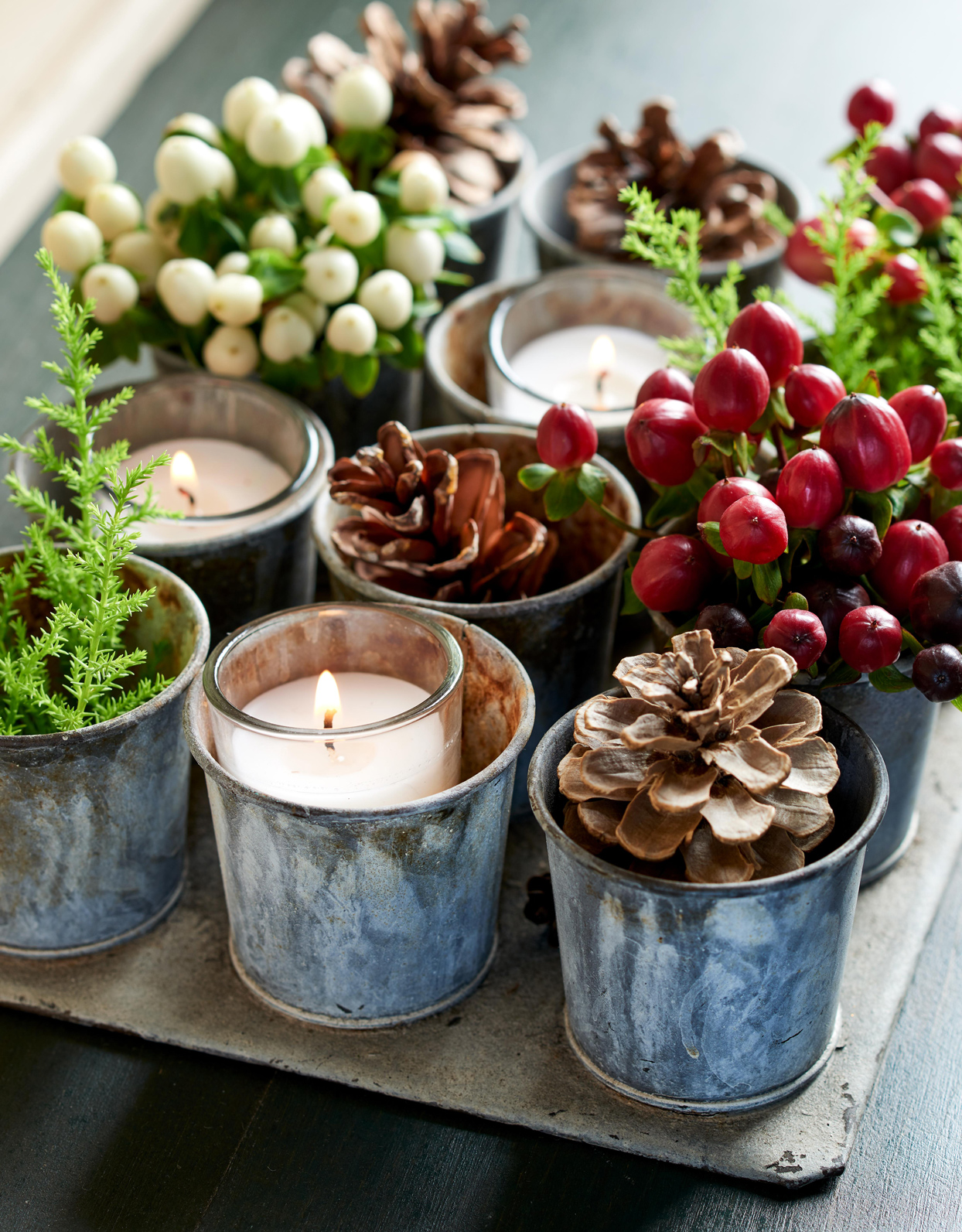 pinecones plants and candles in small metal holders