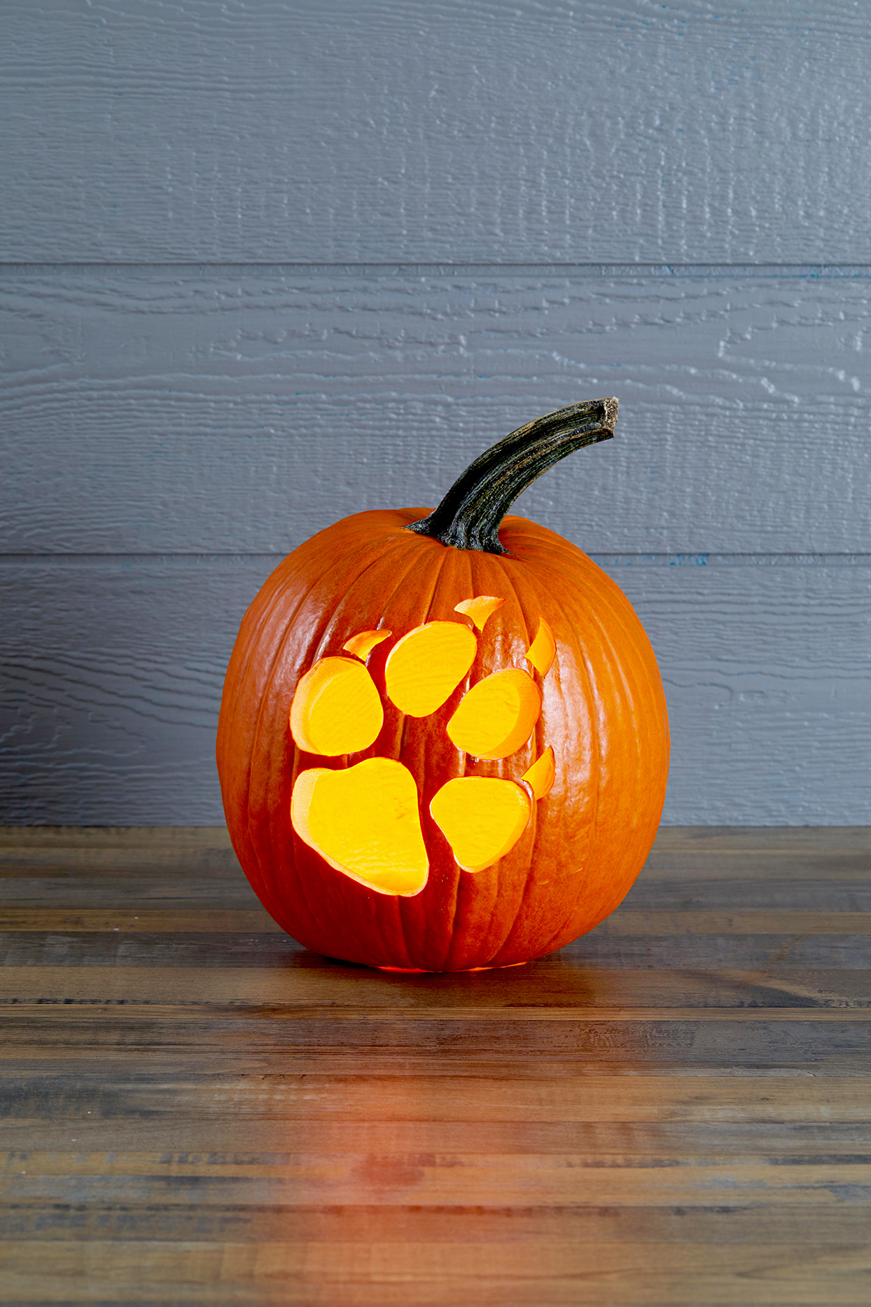 Pumpkin with paw print carving