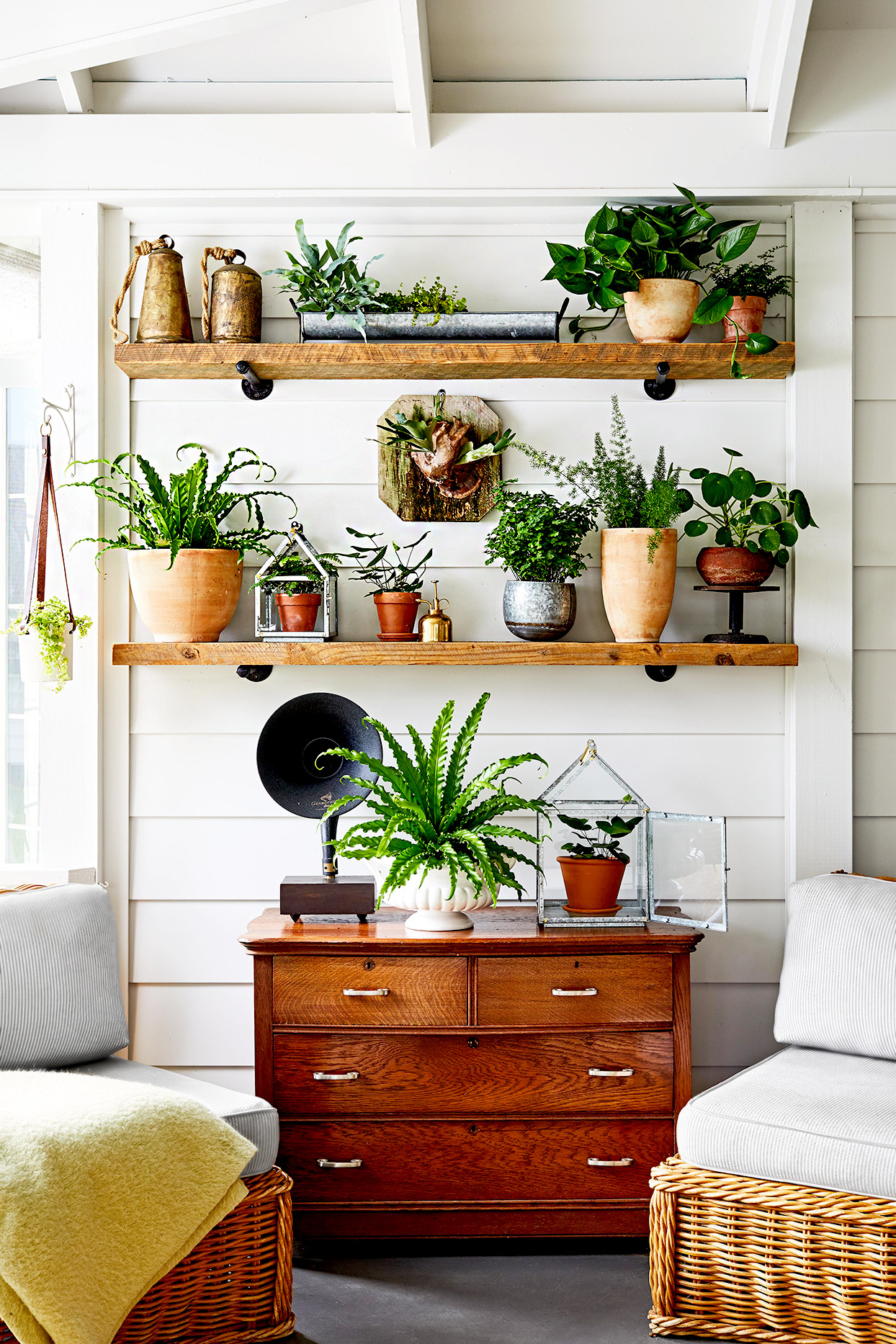 Seating area with shelving for plants