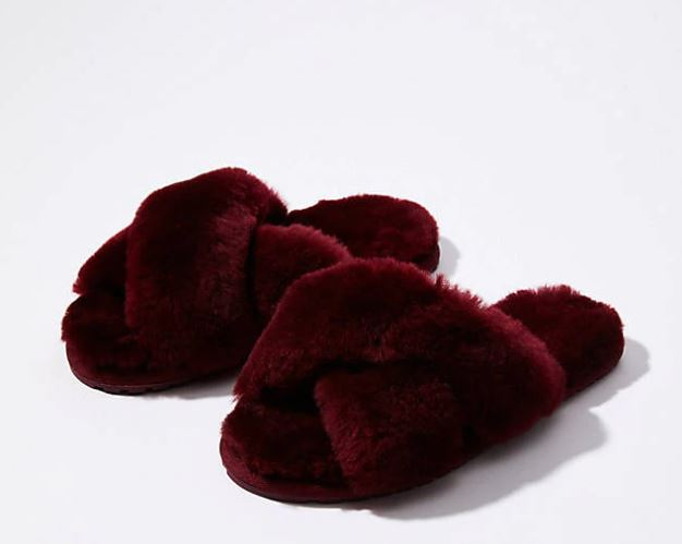 maroon slippers