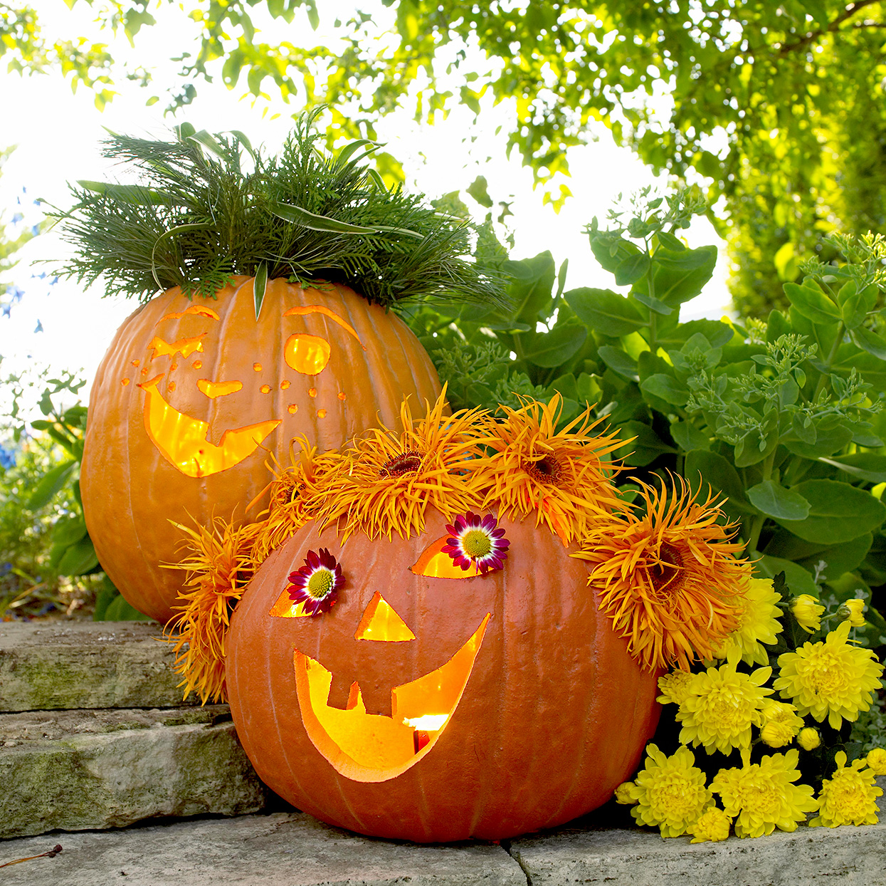 Two carved pumpkins with flowers