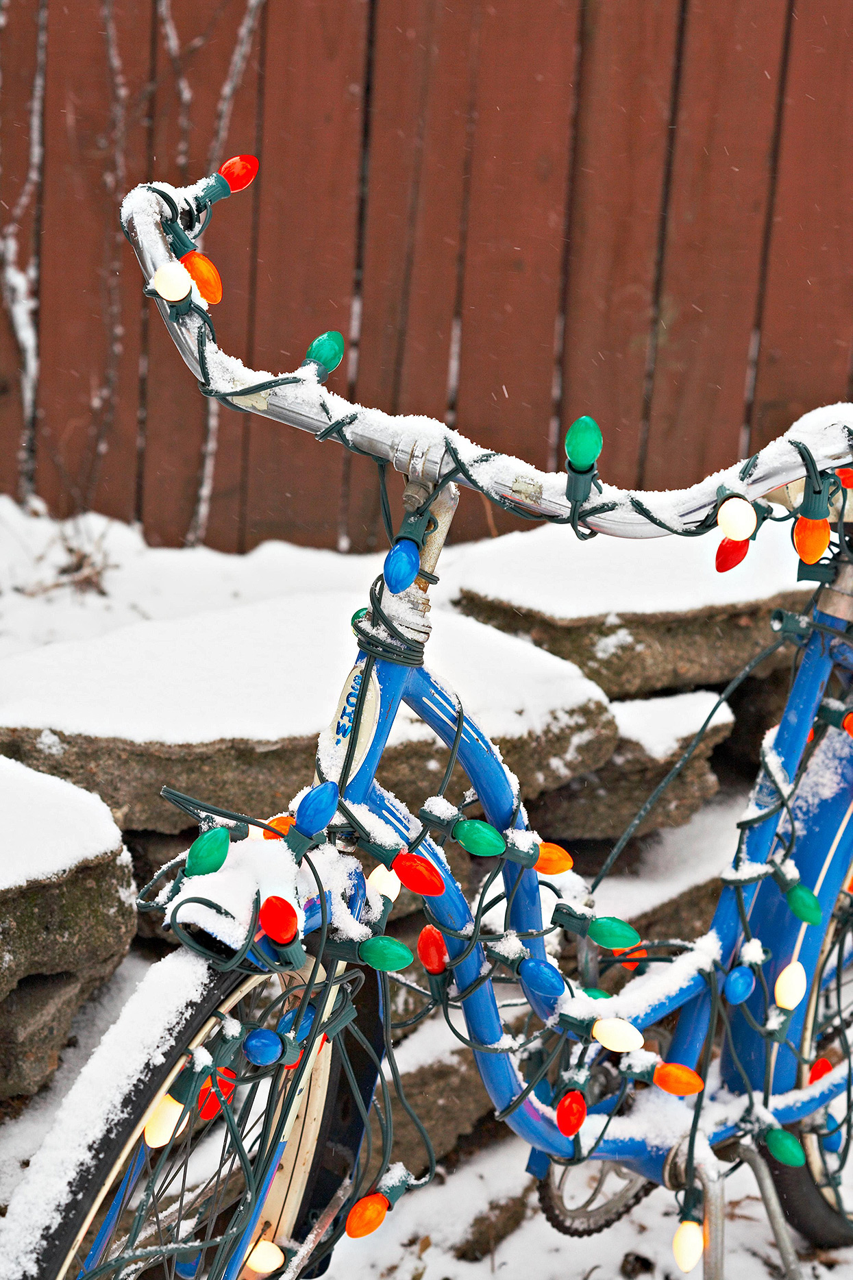 colorful christmas lights strung around blue vintage bicycle