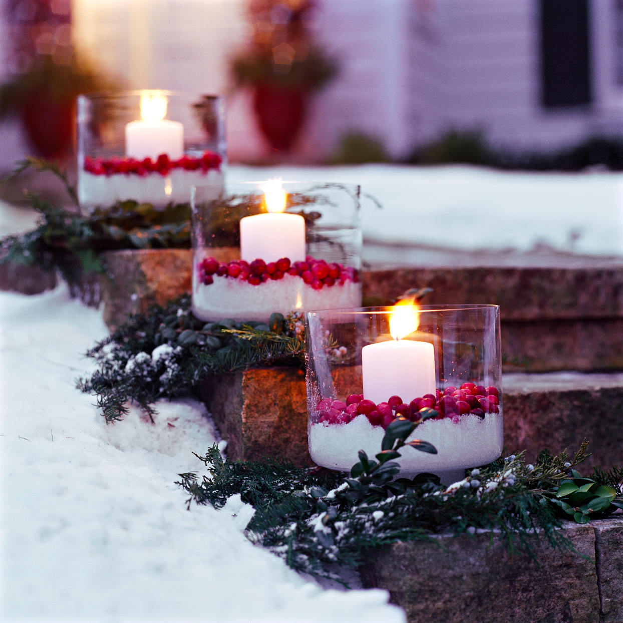 cranberry luminarias decorating snowy steps