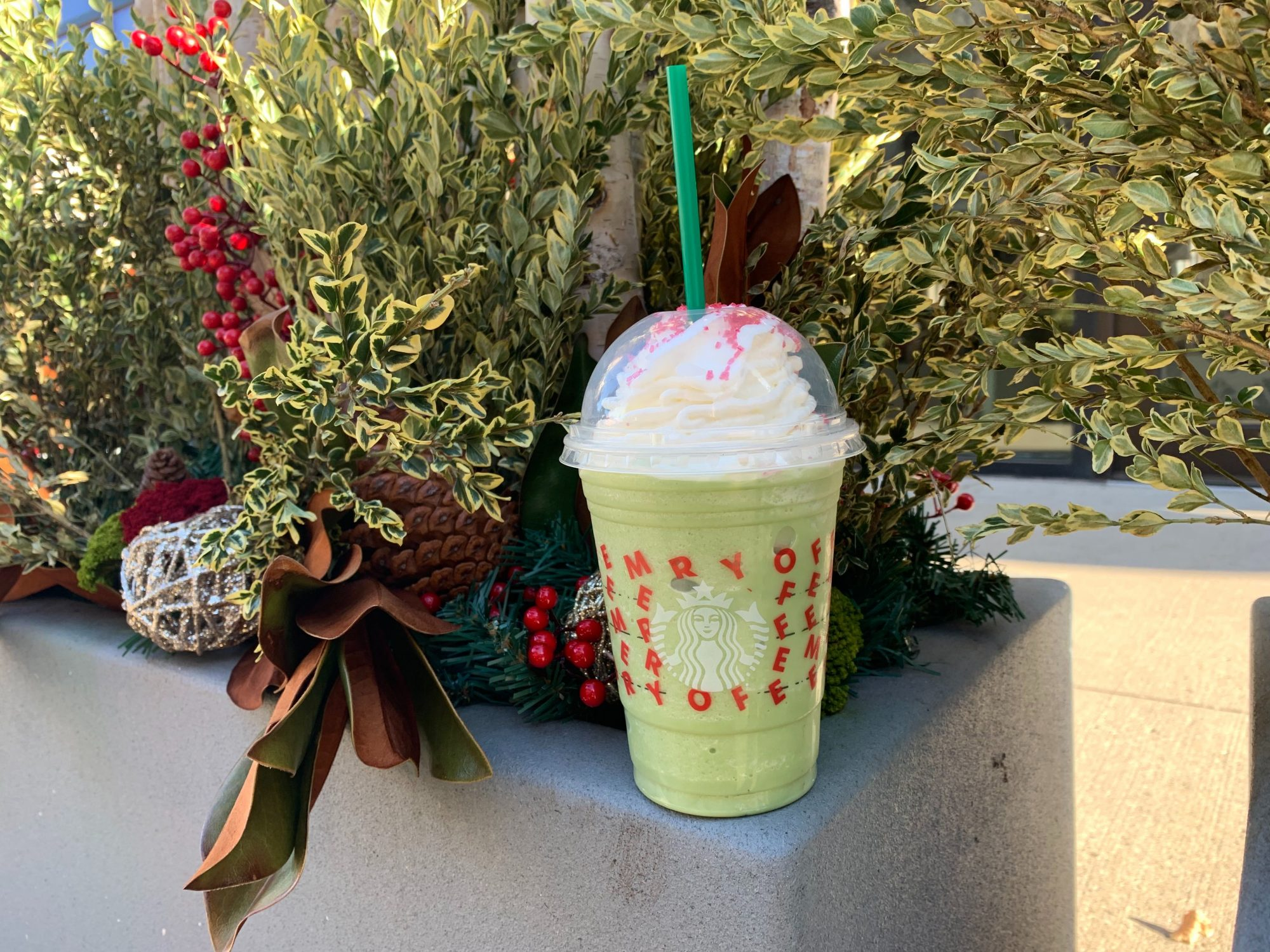 buddy the elf frappuccino