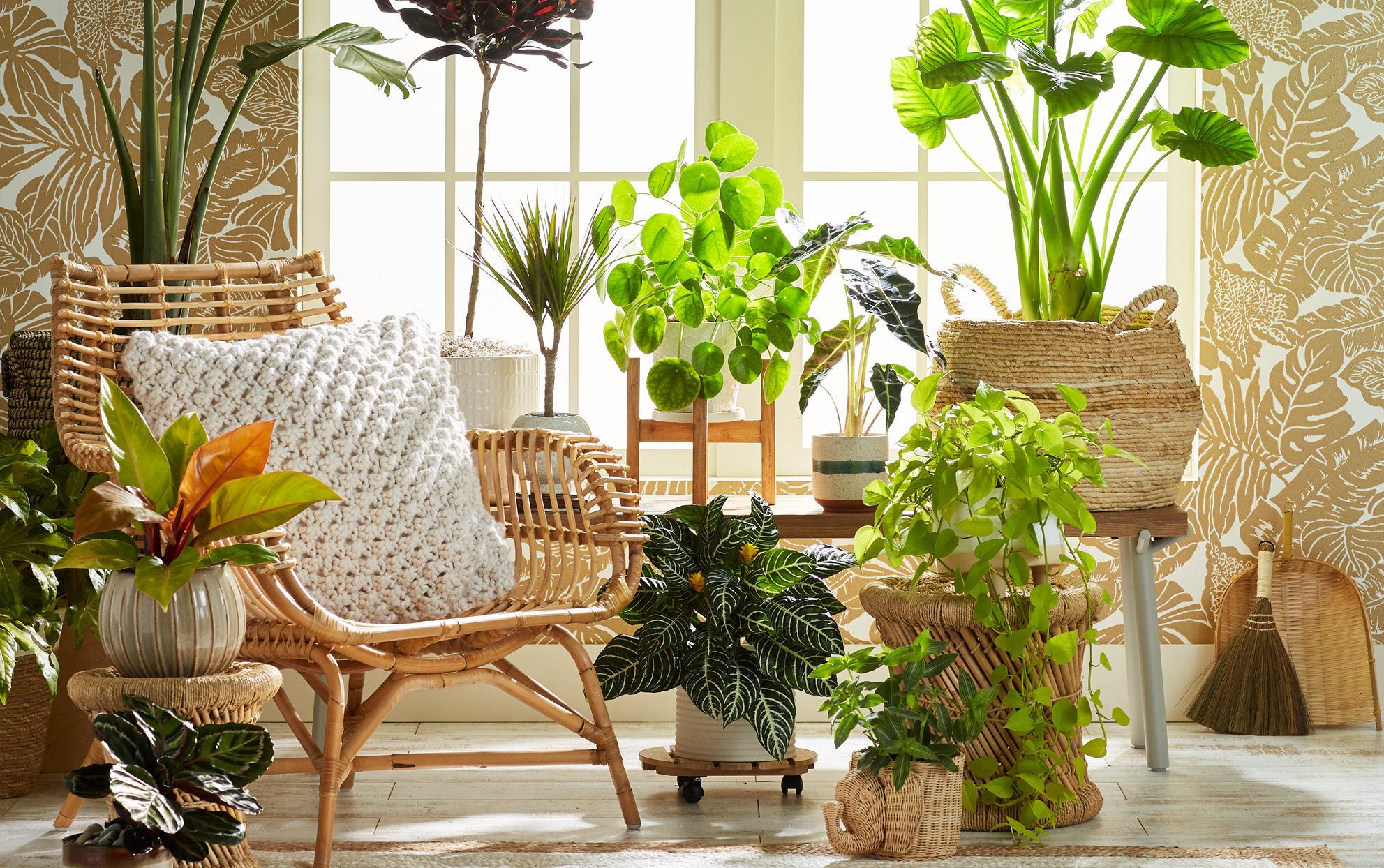 4 Gardening Trends You'll Want to Dig into in 2021