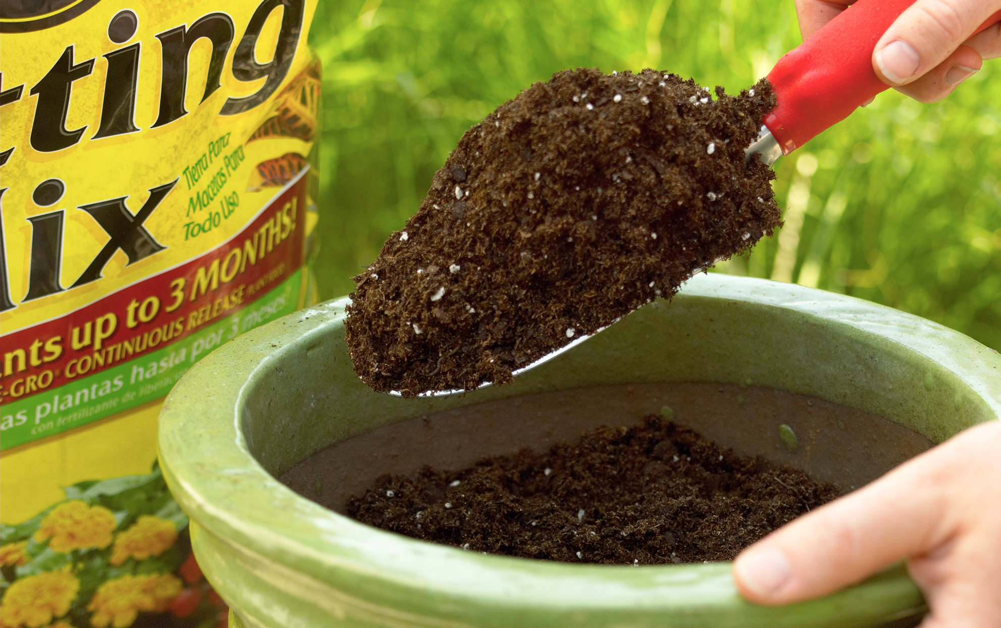 The Problem with the Peat Moss in Your Pots (and What to Use Instead)