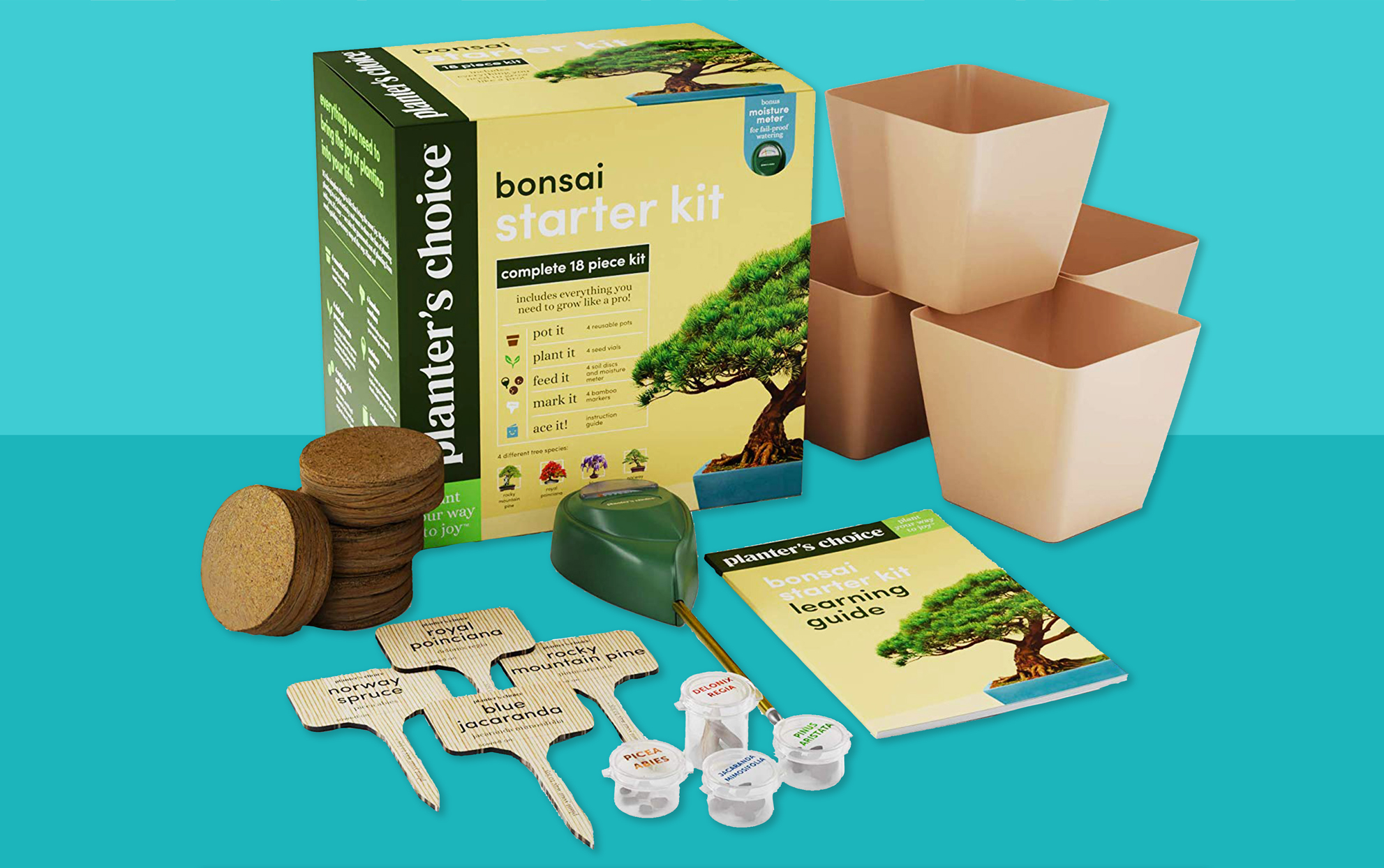 Bonsai Starter kit on a teal background