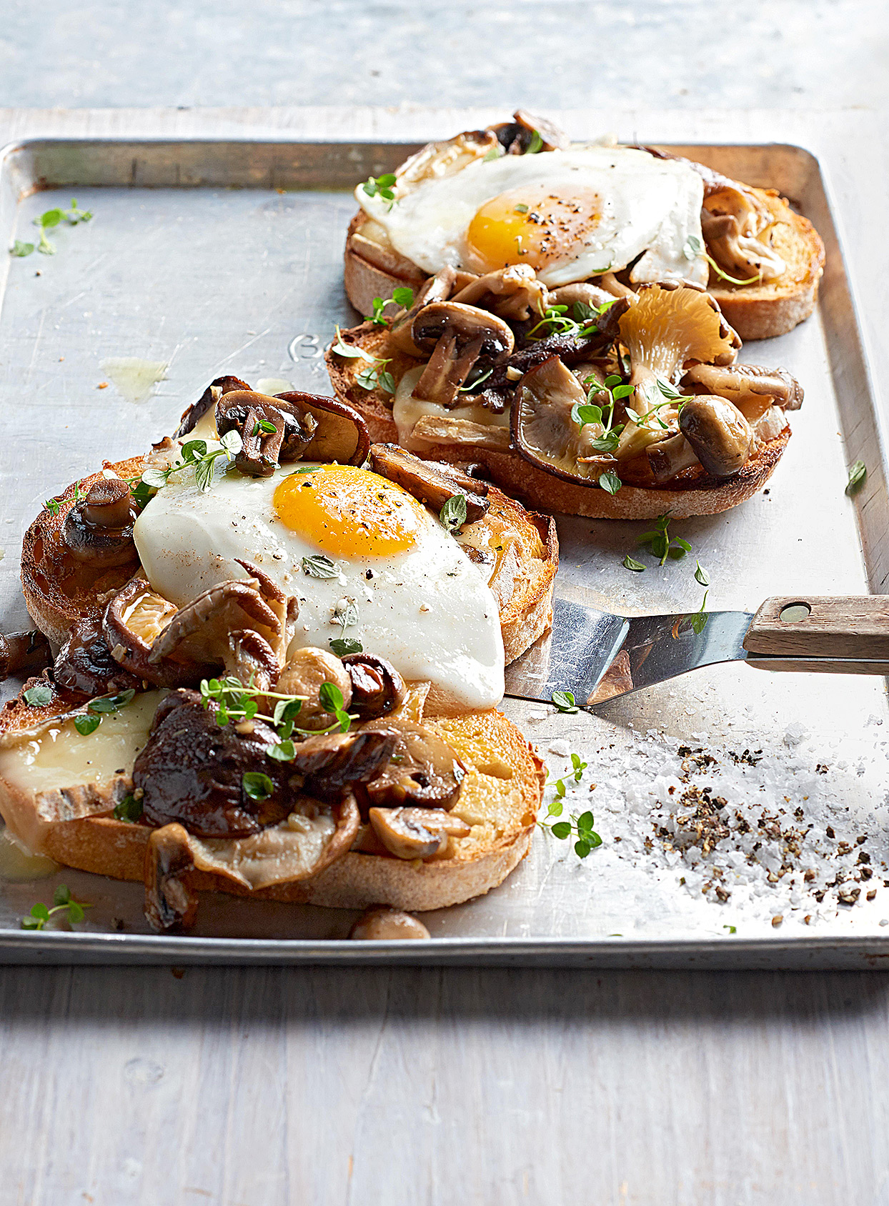 Mushroom and Cheese Sourdough Toasts