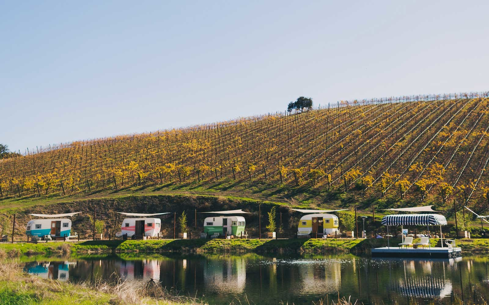 vintage campers on the water at a vineyard
