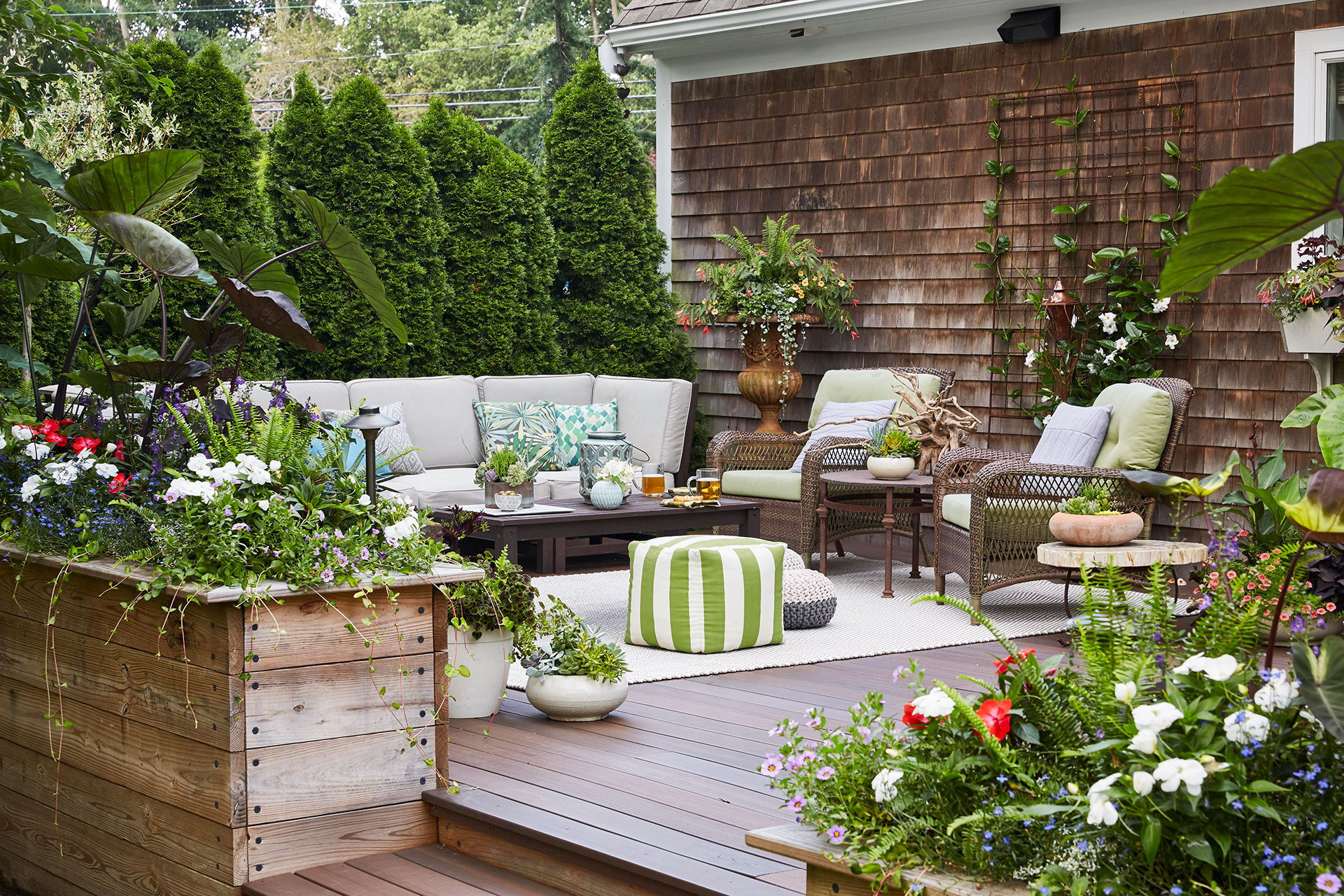Flowering plants with armchairs and sofa at patio