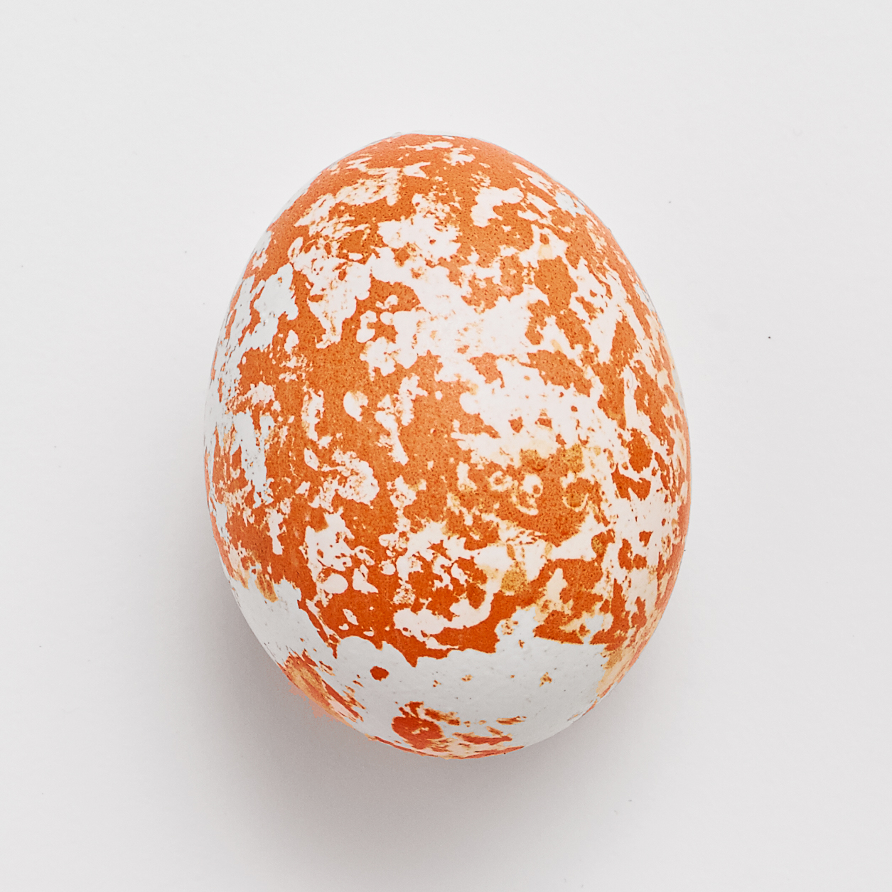 Metallic-Sponged Egg