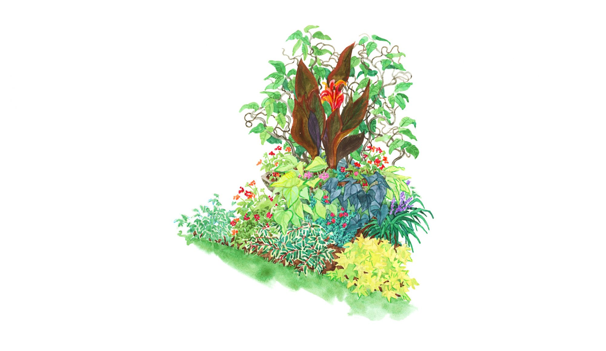 Tropical-Look Garden Plan illustration