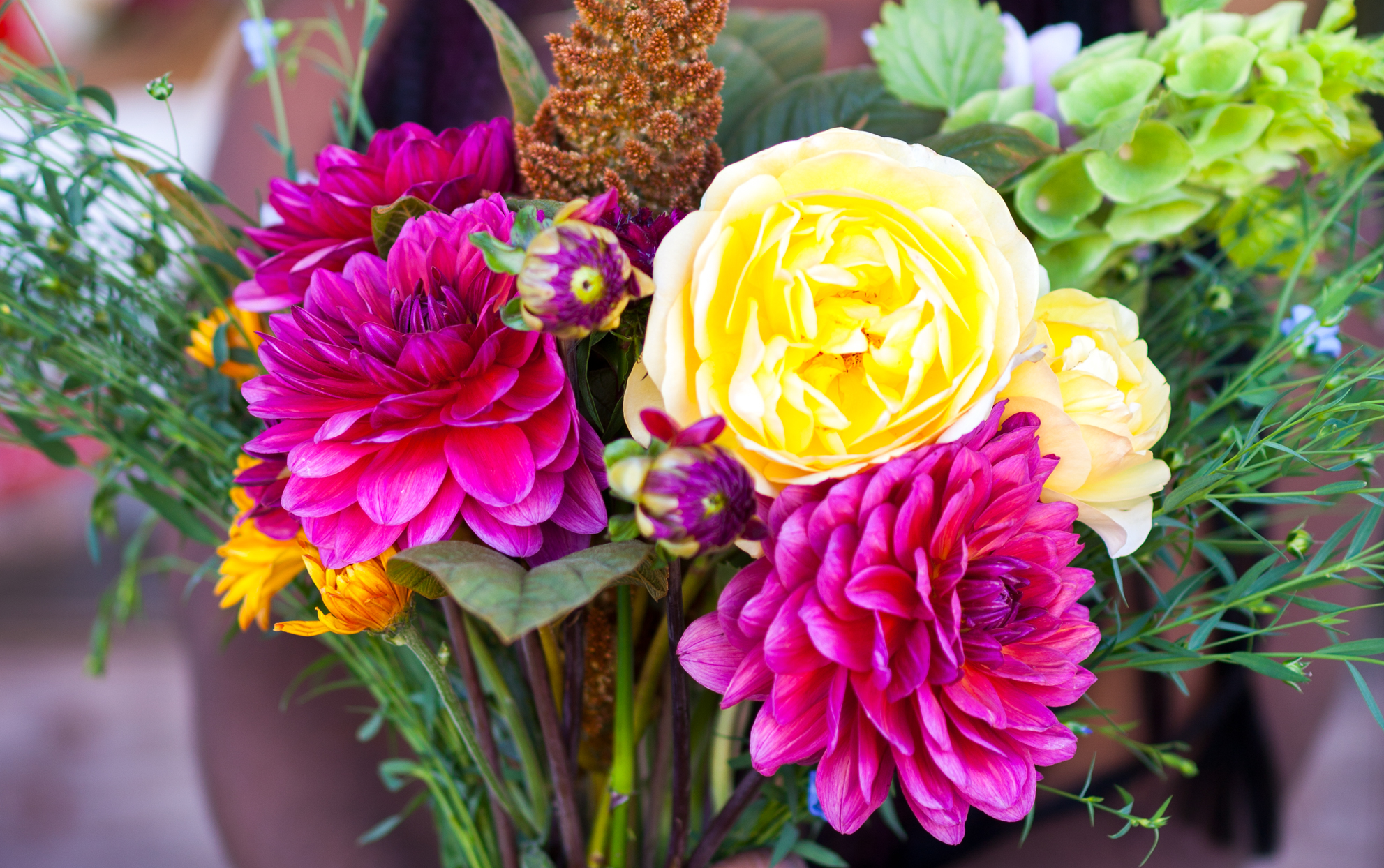 Bouquet of bright fresh flowers