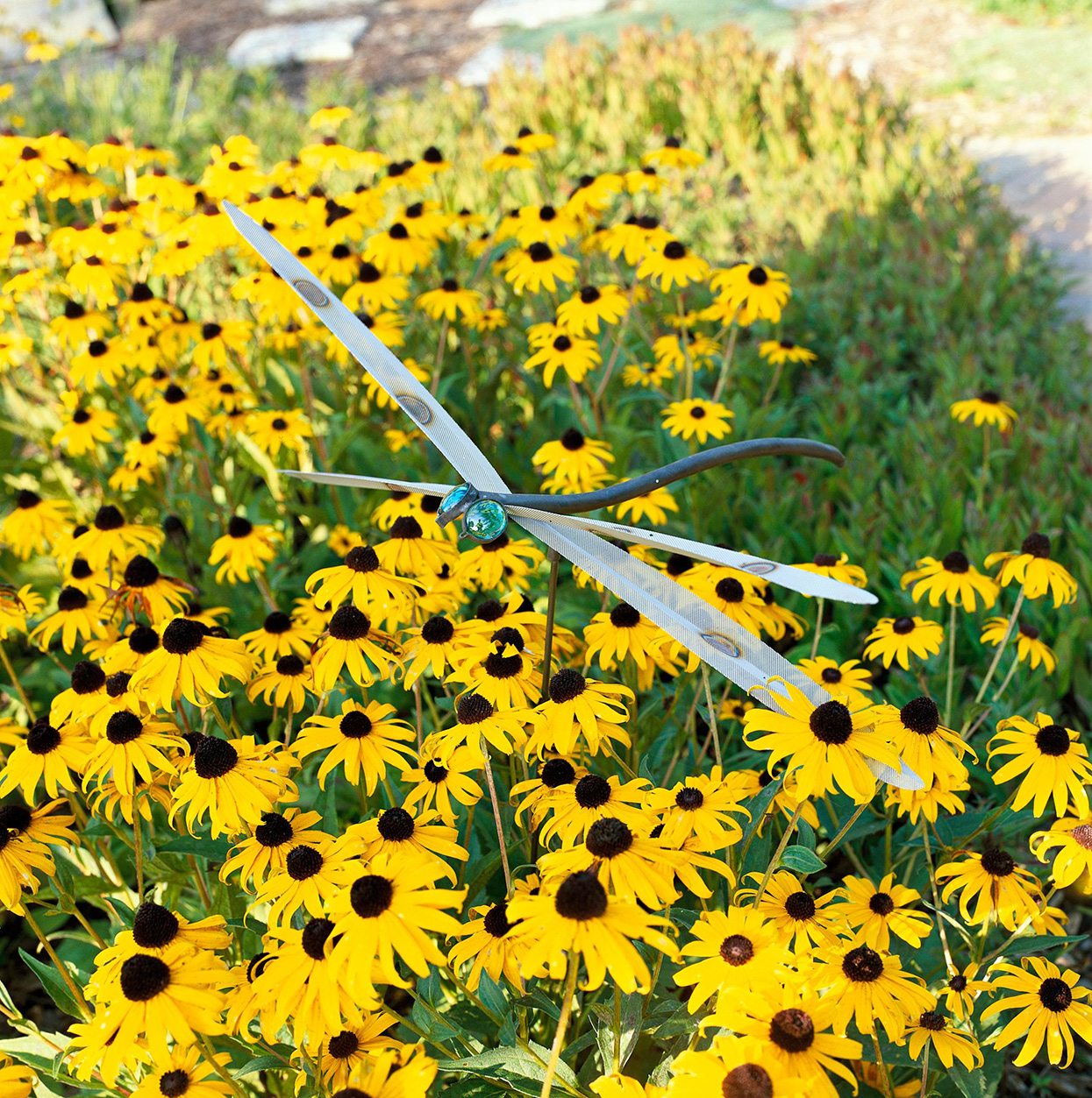orange-yellow black-eyed susan flowers with dragonfly garden decor