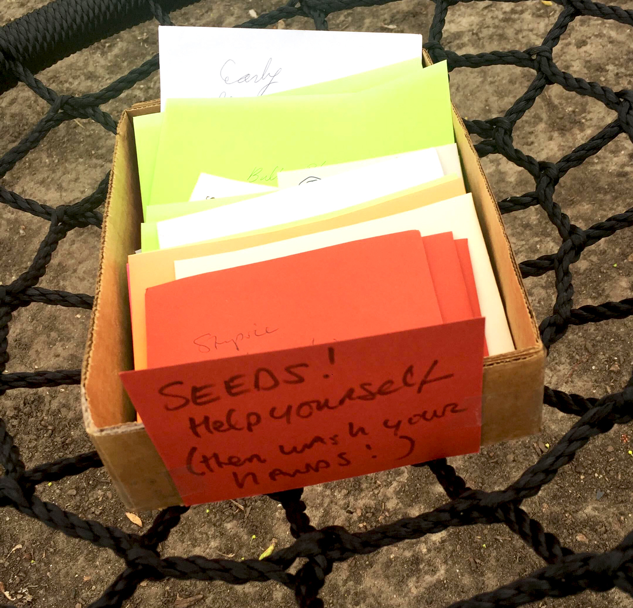 box of seeds with note on front