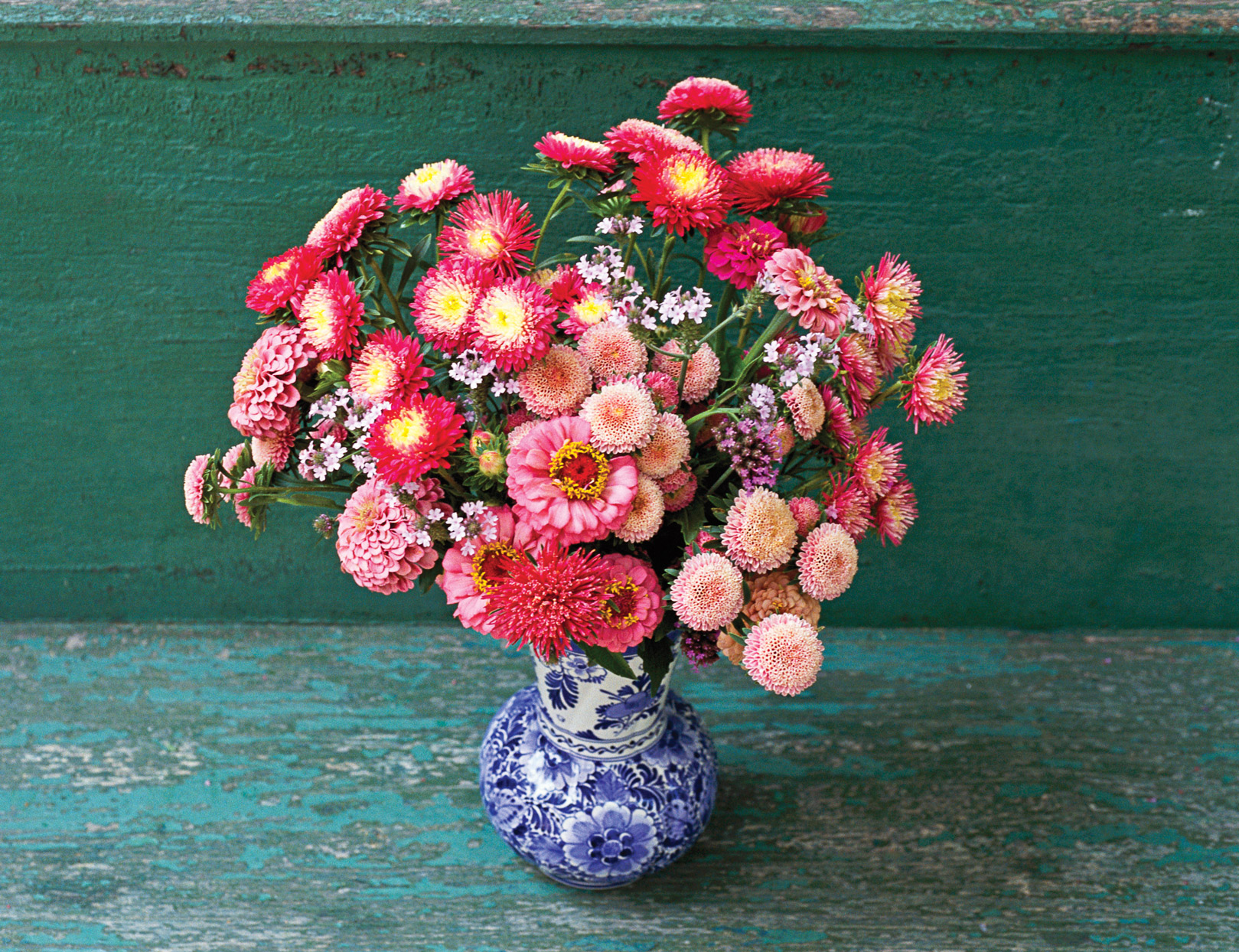 pink red zinnia flower arrangement blue white china vase