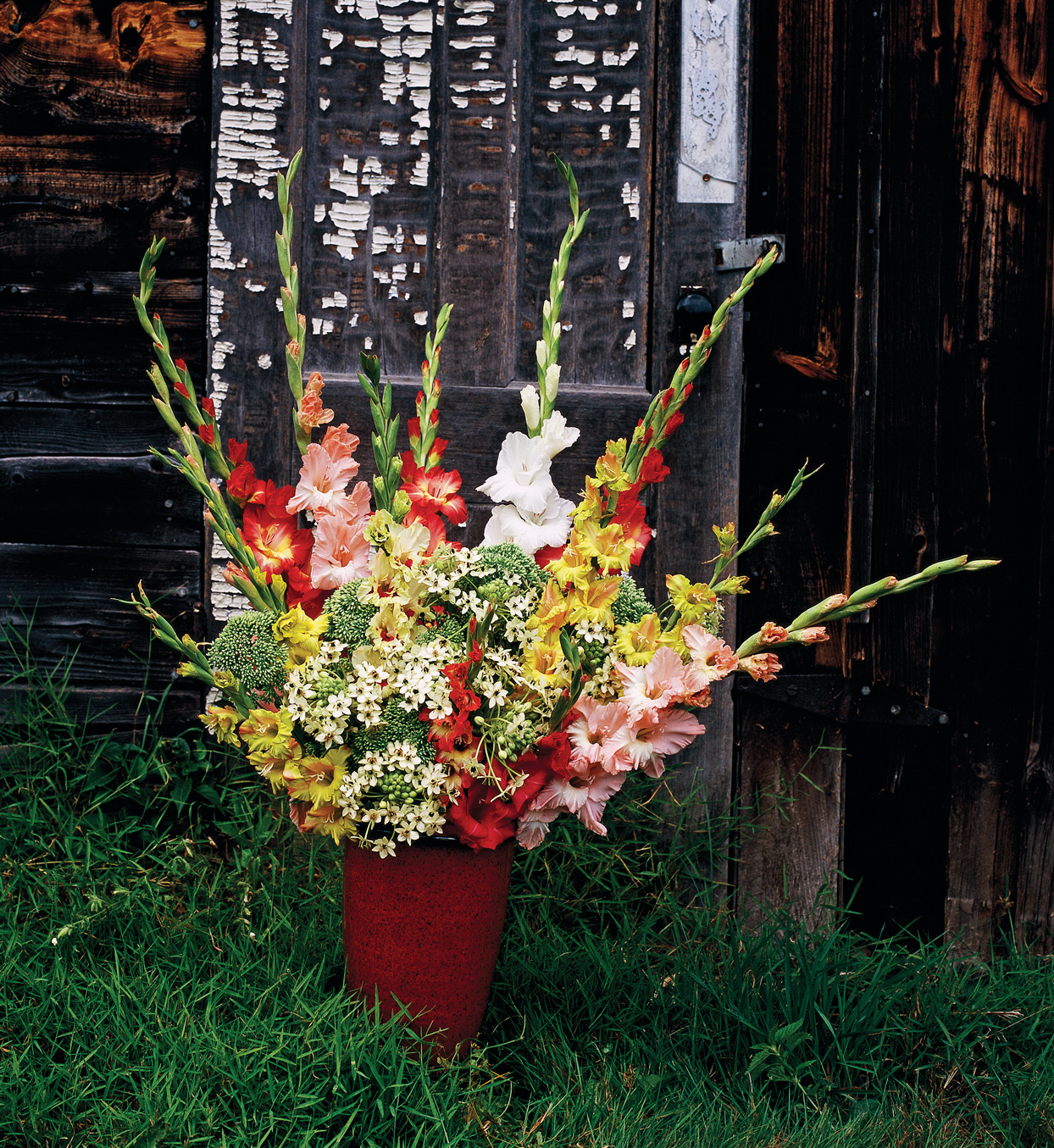 warm tone gladiolas flower arrangement