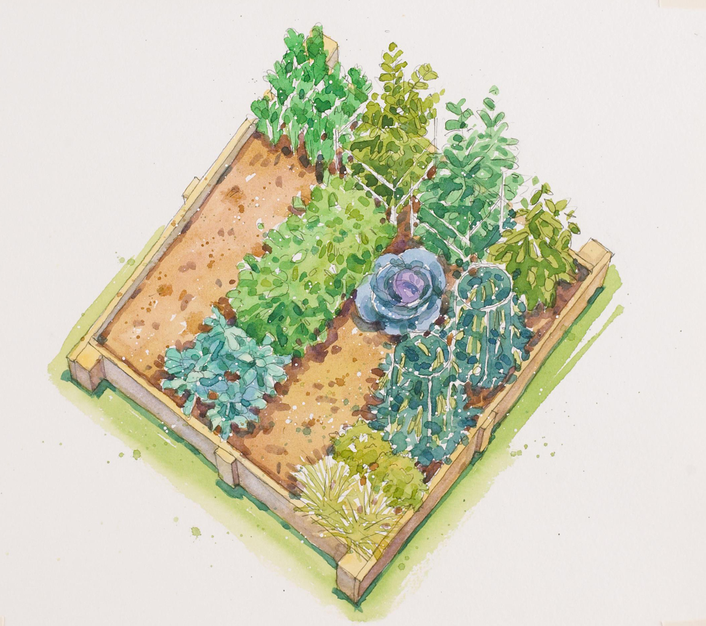 garden plan open space