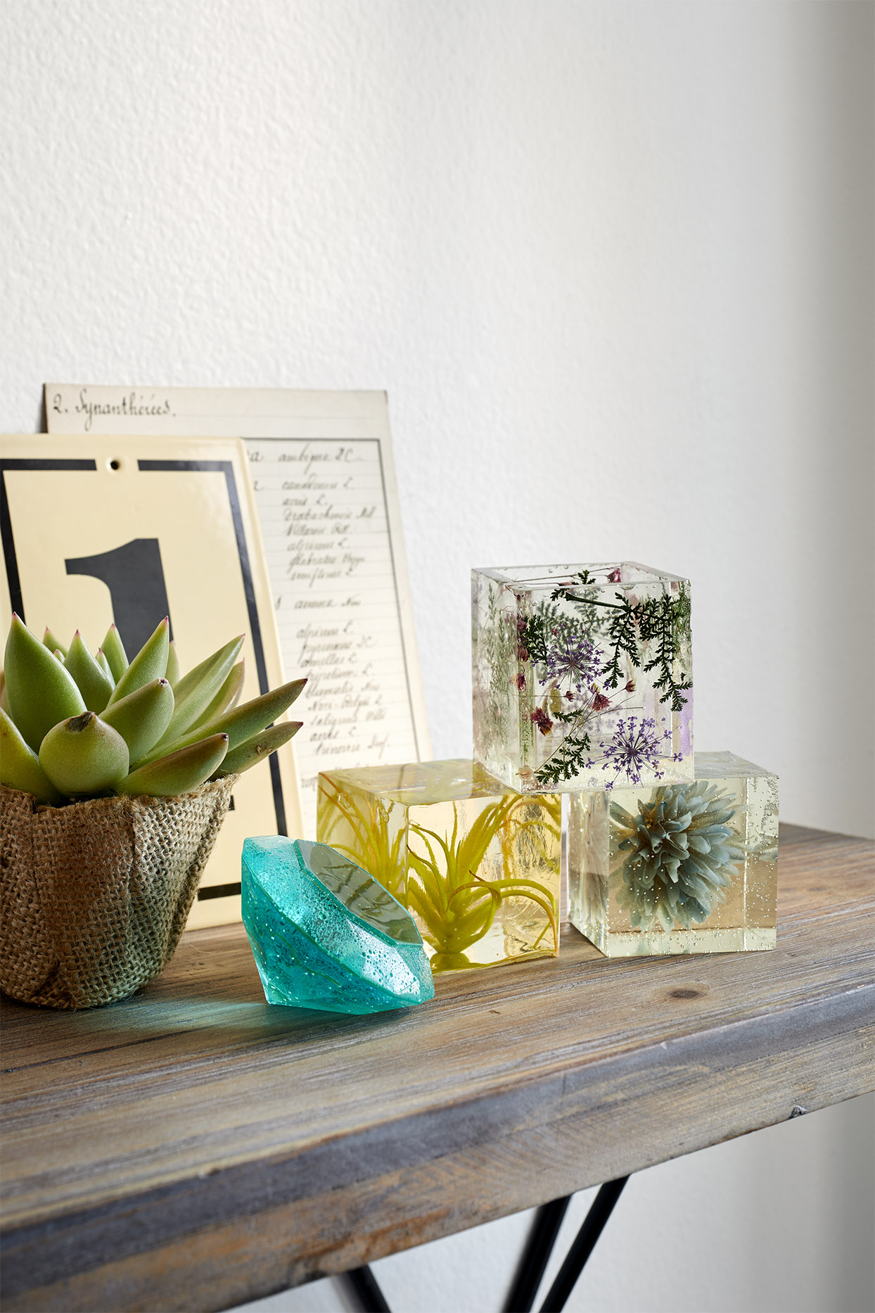 Resin cubes with plants in them