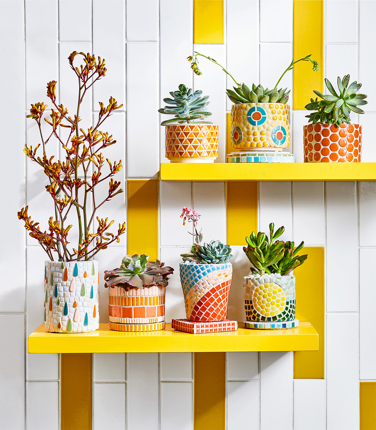 diy finished mosaic tile planters on yellow shelves