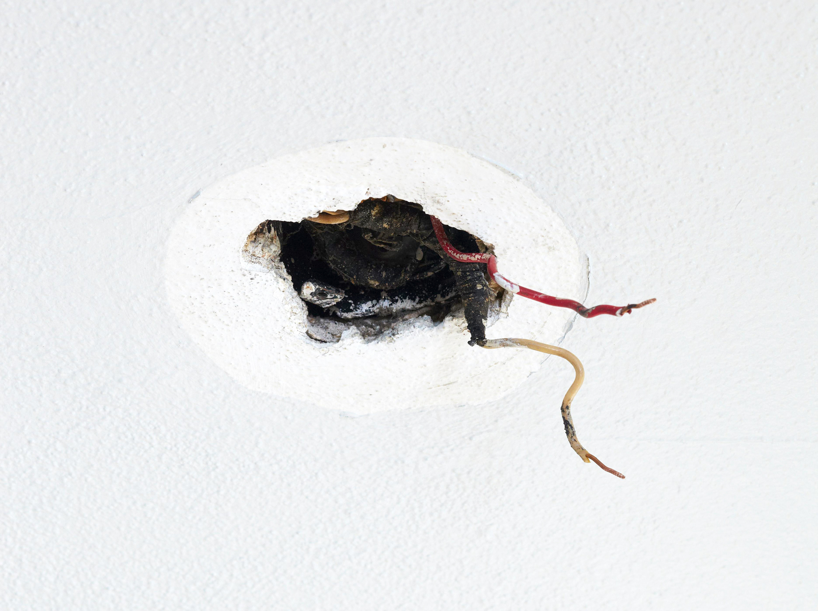 light fixture ceiling wiring exposed wires