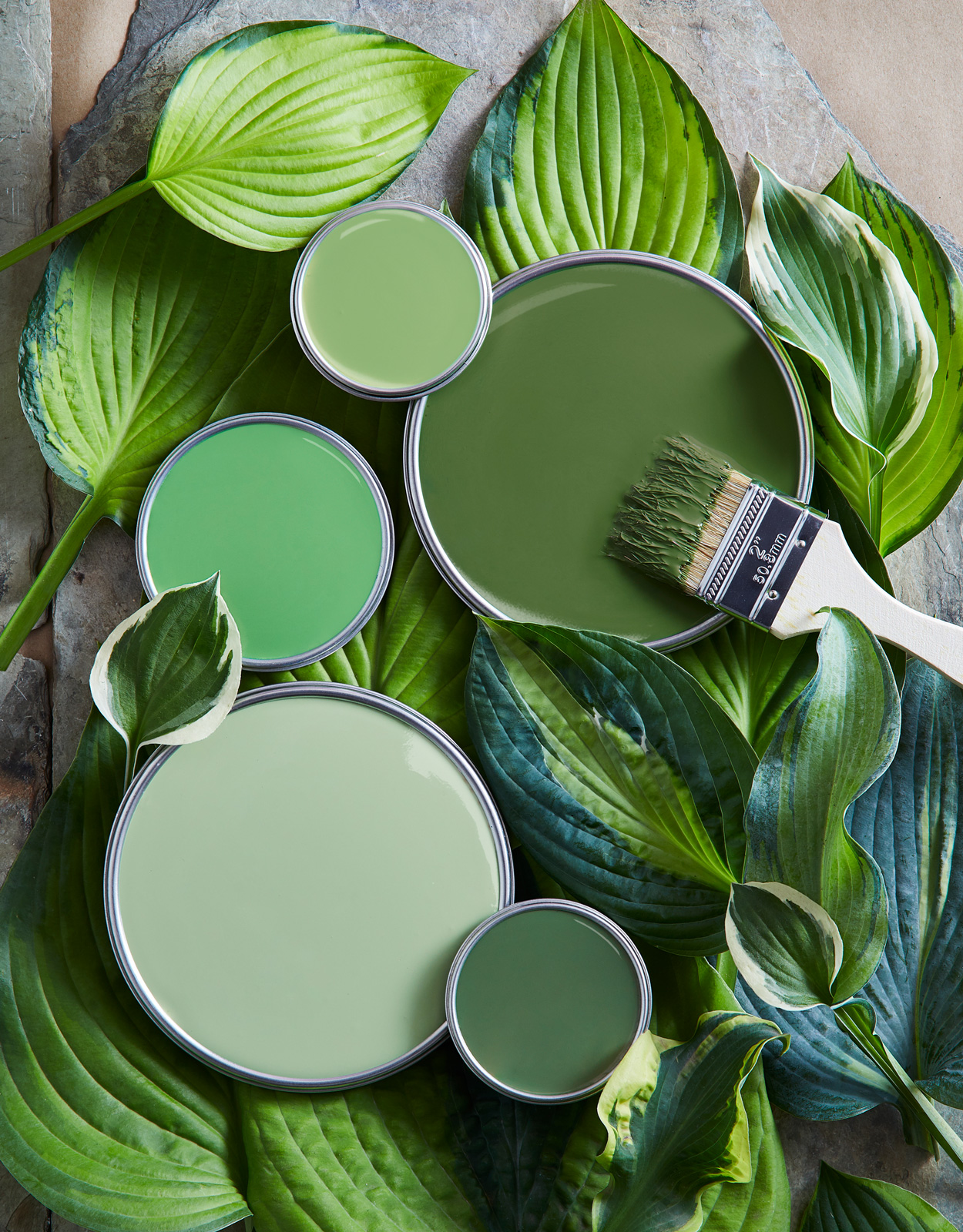 five shades of green paint surrounded by leaves