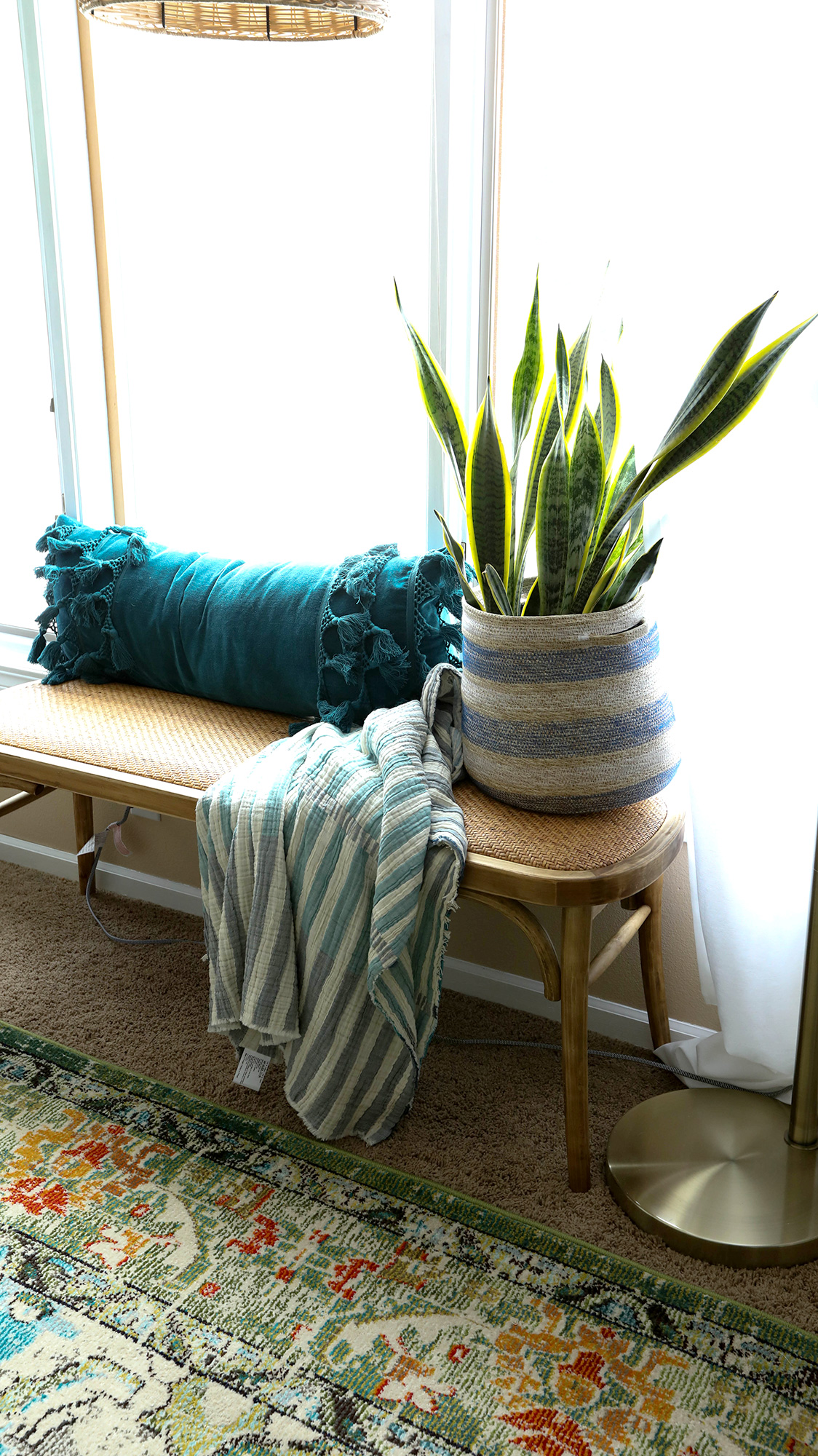 Bench in front of window with a plant