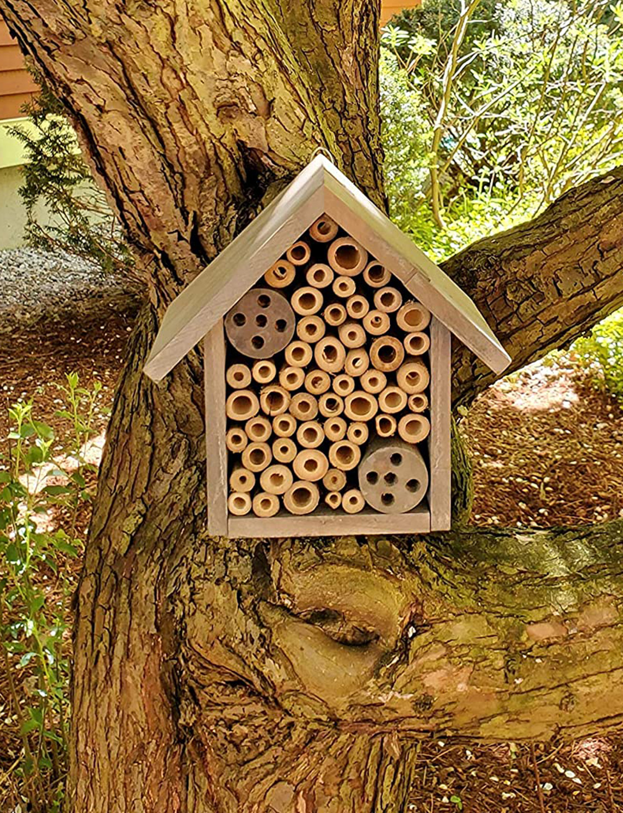 wood mason bee house with bamboo tubes in tree