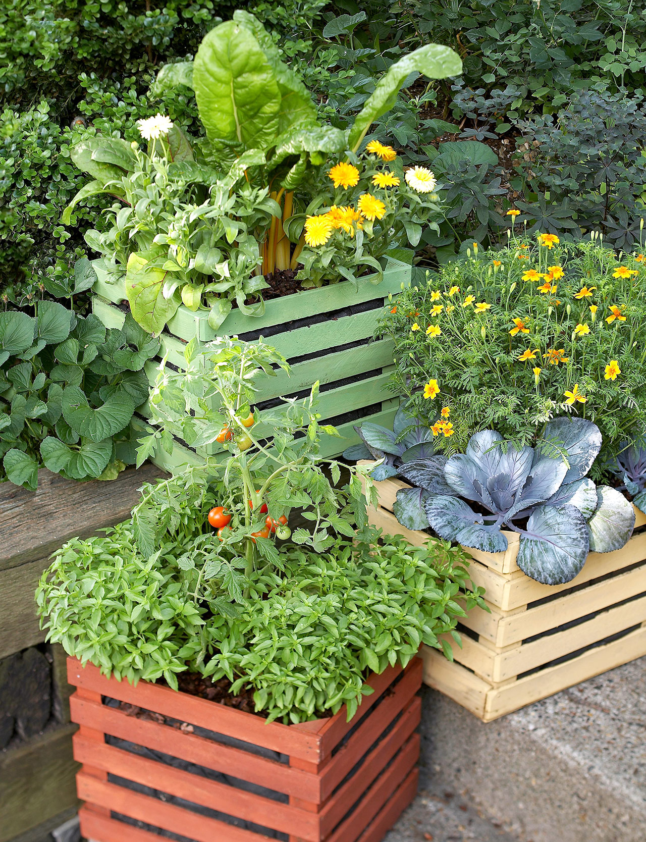 painted wooden boxes with vegetables