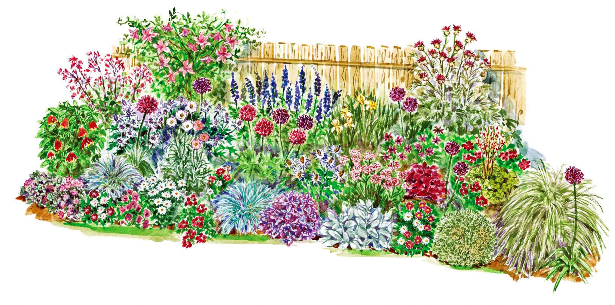 garden illustration with fence