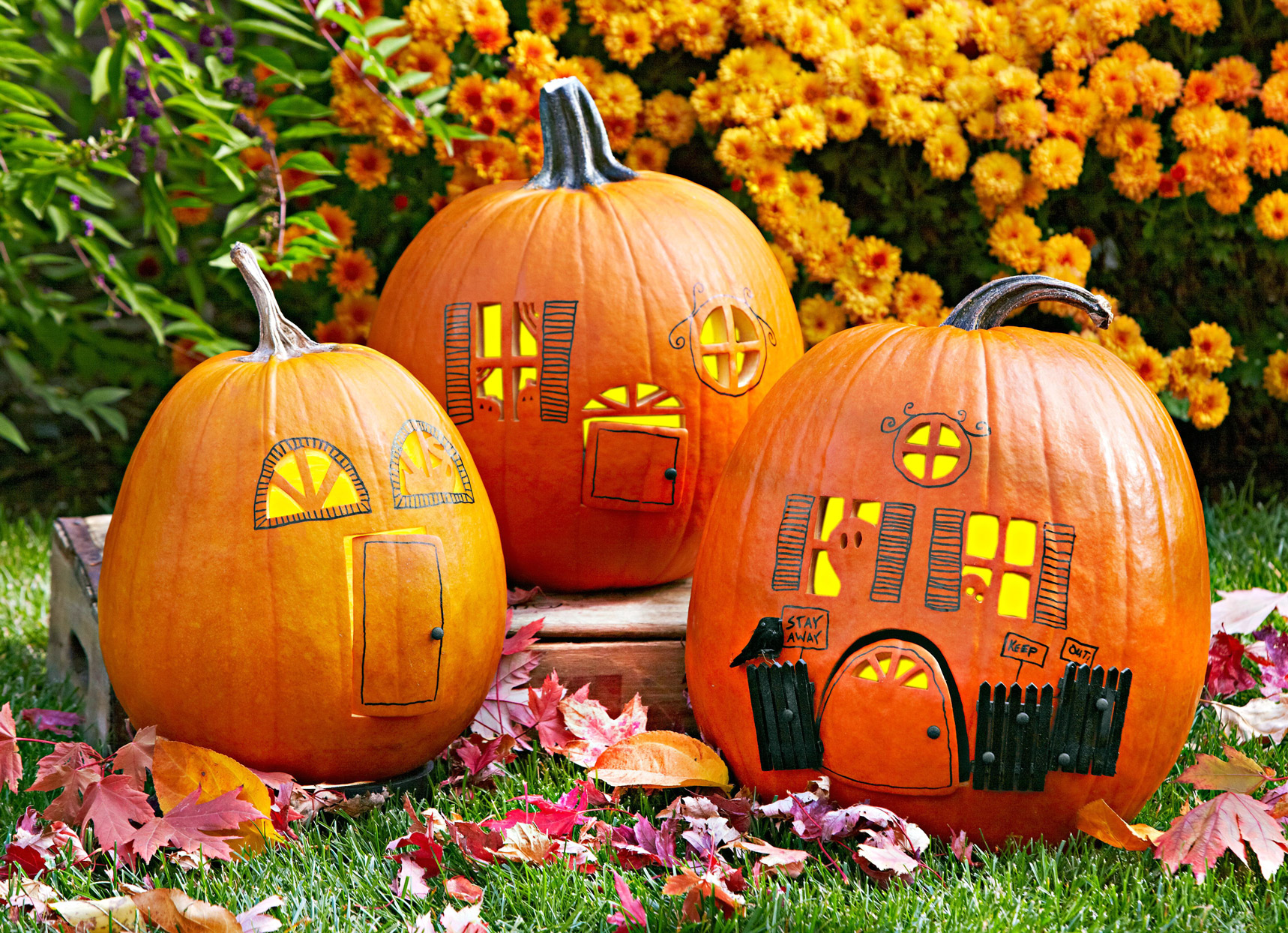 Carved Pumpkin Houses